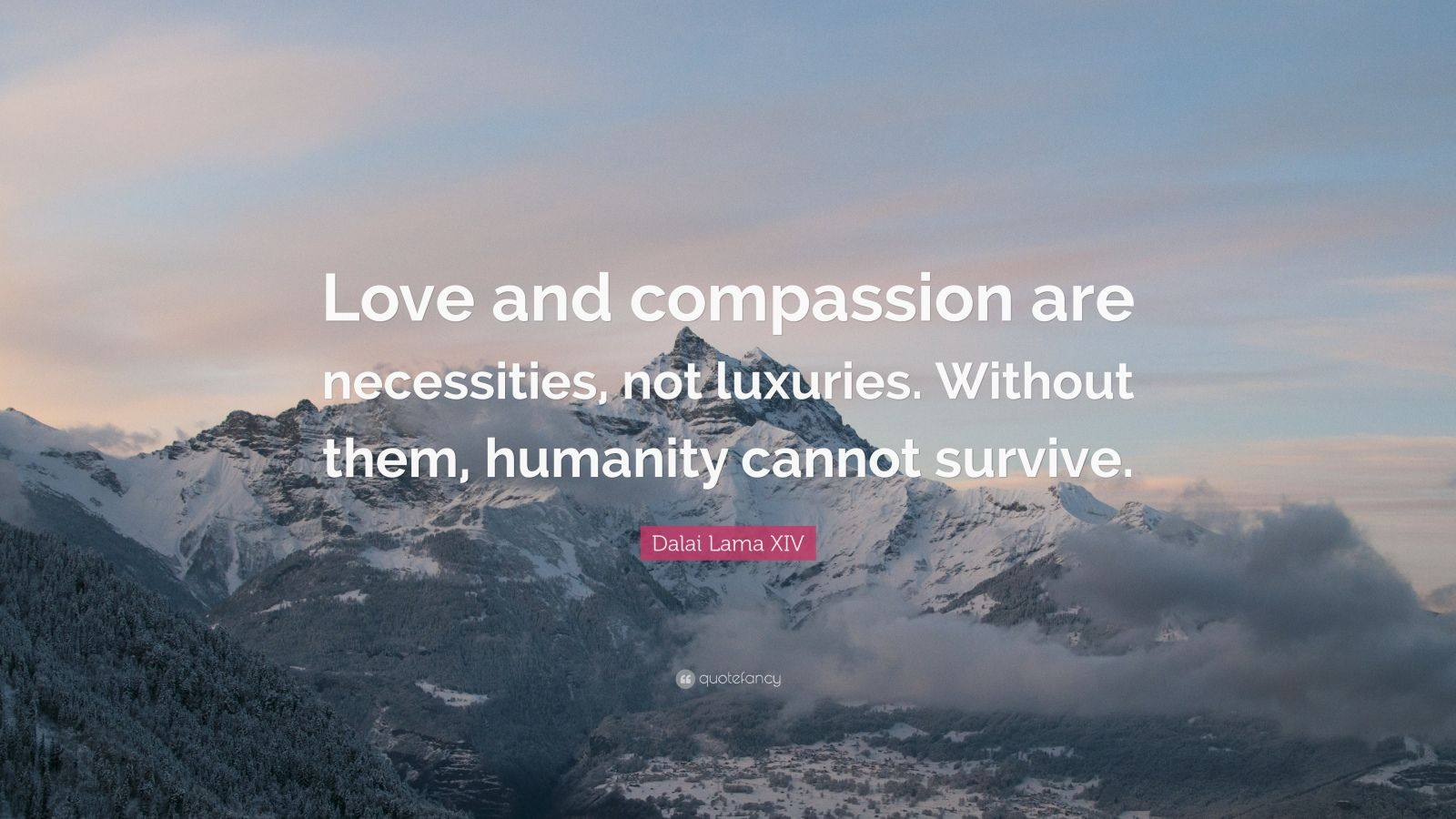 Socrates Wallpaper Quotes Dalai Lama Xiv Quote Love And Compassion Are Necessities