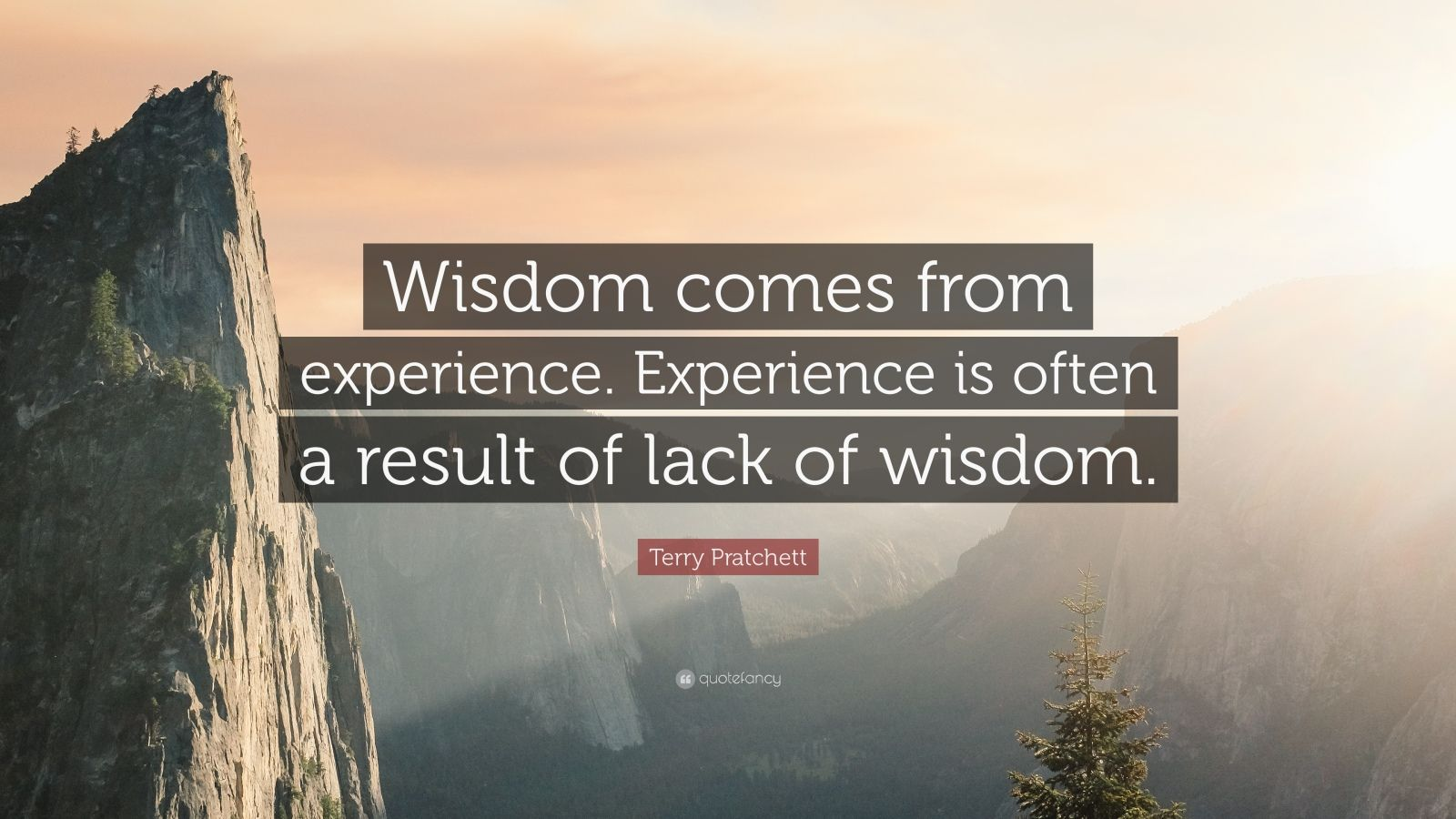 Theodore Roosevelt Wallpaper Quote Terry Pratchett Quote Wisdom Comes From Experience