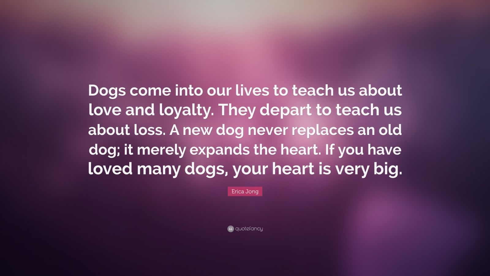 Dog Quote Wallpaper Erica Jong Quote Dogs Come Into Our Lives To Teach Us