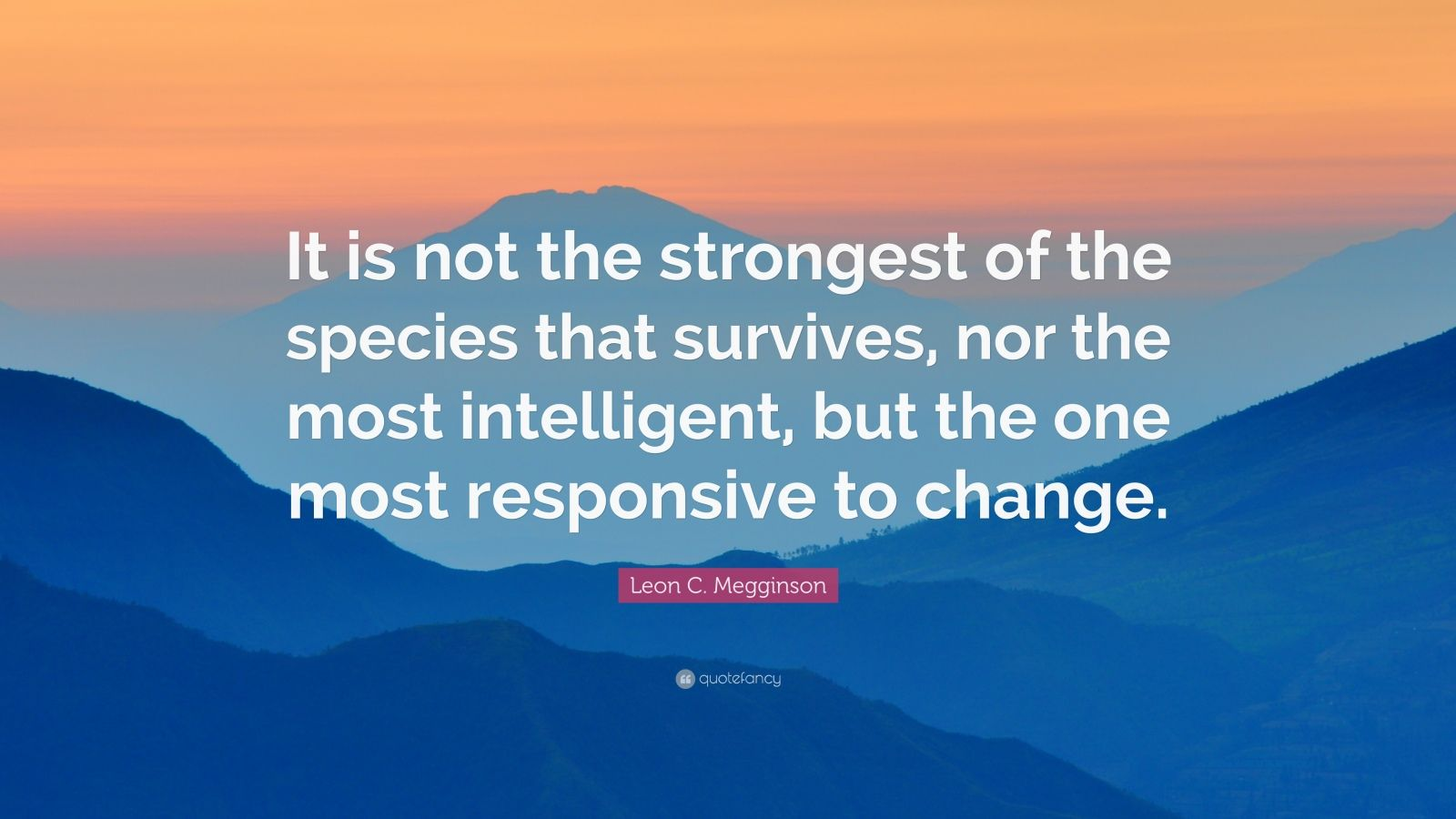 Courage Wallpapers Quotes Leon C Megginson Quote It Is Not The Strongest Of The