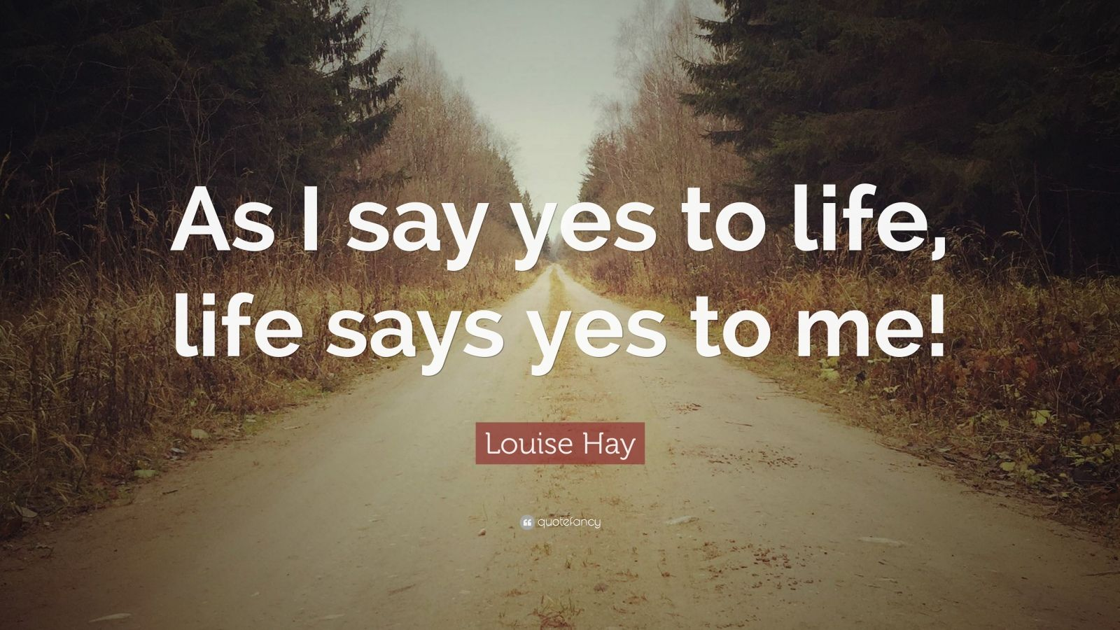 Conor Mcgregor Quote Wallpaper Louise Hay Quote As I Say Yes To Life Life Says Yes To