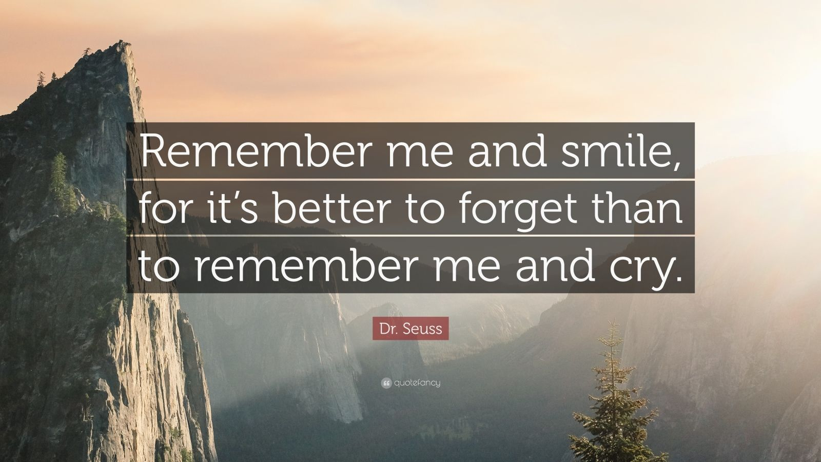 Dr Abdul Kalam Quotes Wallpapers Dr Seuss Quote Remember Me And Smile For It S Better