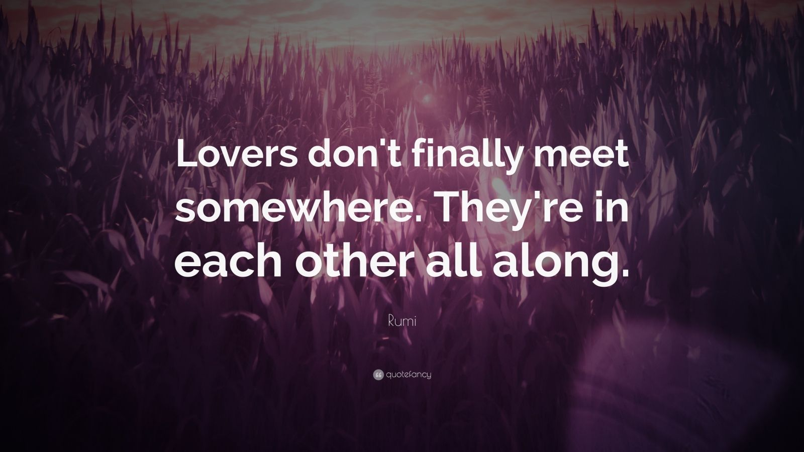 Zen Quote Wallpaper Rumi Quote Lovers Don T Finally Meet Somewhere They Re
