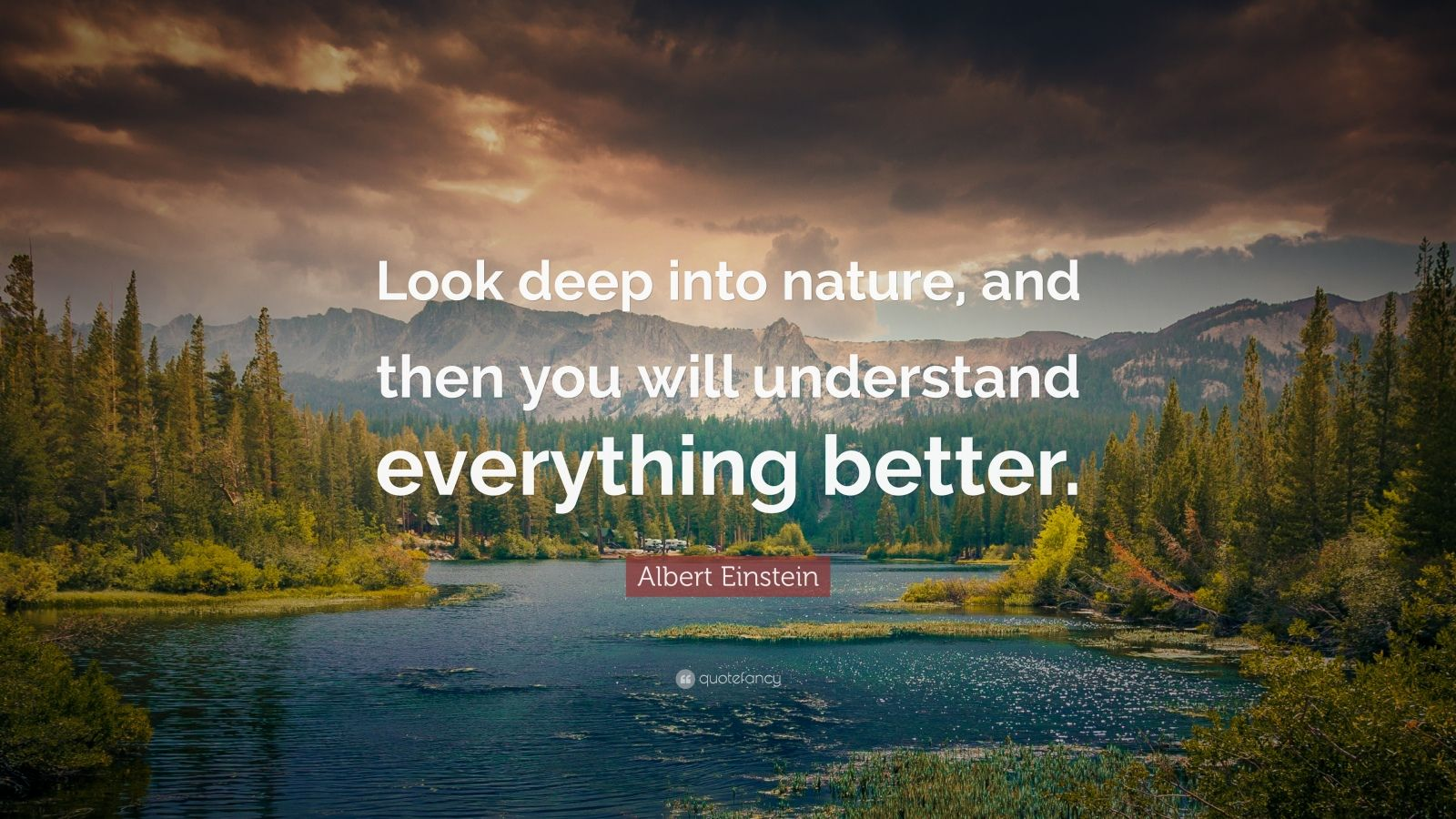Deep Wallpaper Quotes Albert Einstein Quote Look Deep Into Nature And Then