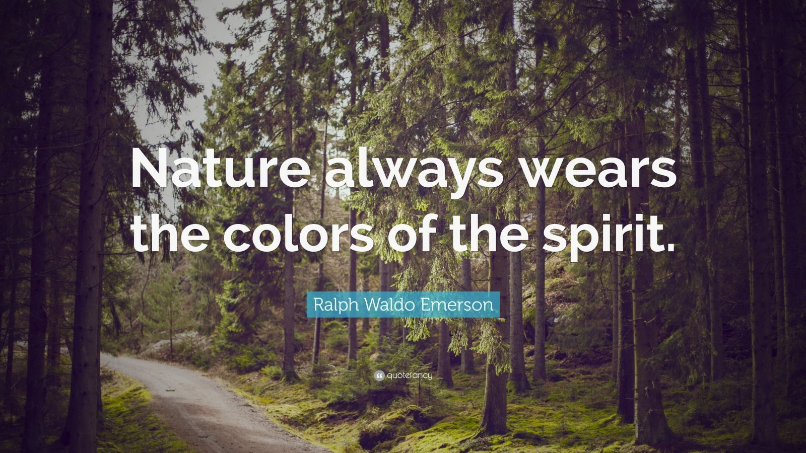 Persistence Quotes Wallpapers Ralph Waldo Emerson Quote Nature Always Wears The Colors