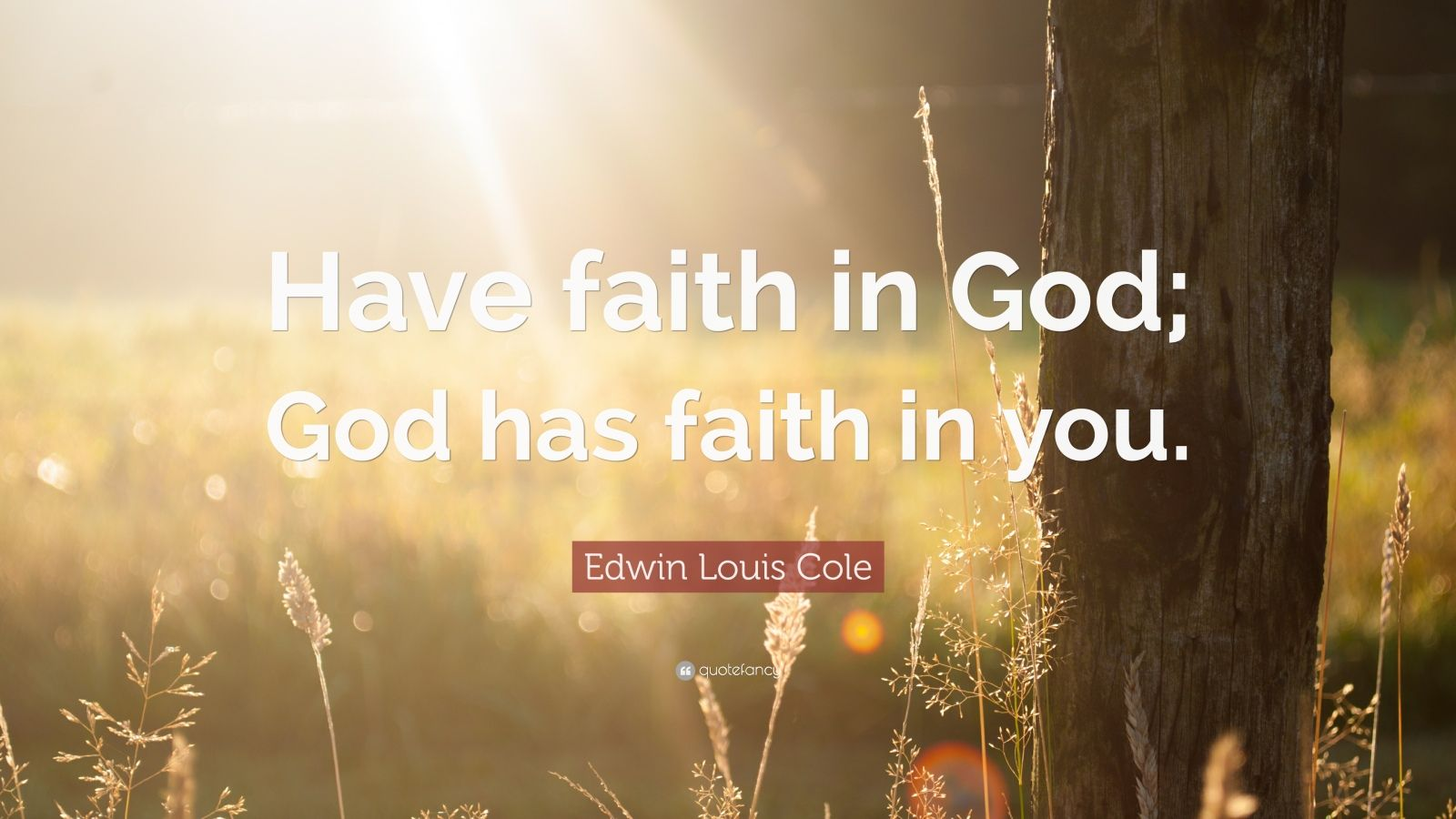 Nick Vujicic Quotes Wallpaper Edwin Louis Cole Quote Have Faith In God God Has Faith