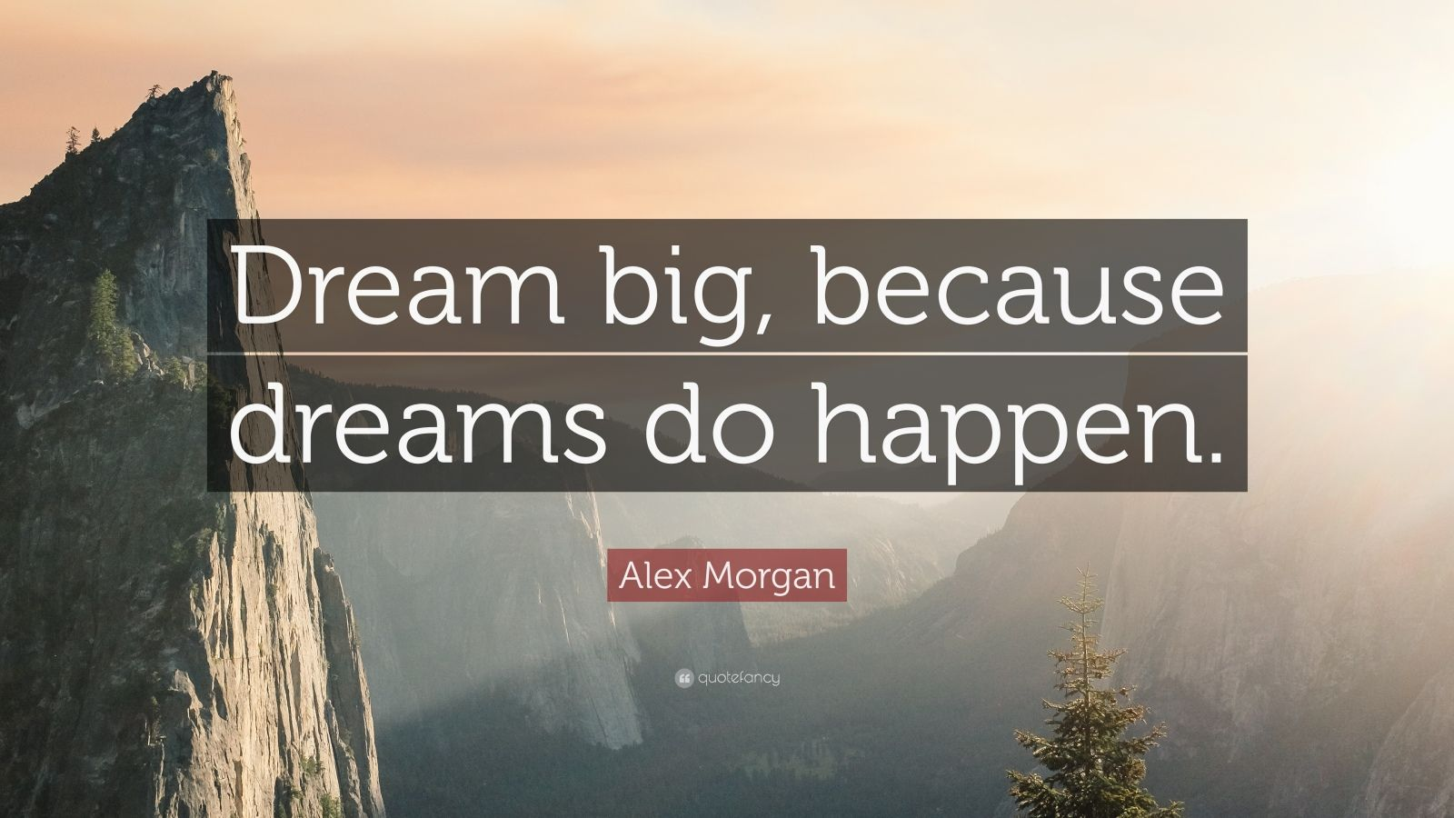 Work Hard Inspirational Quotes Wallpaper Alex Morgan Quote Dream Big Because Dreams Do Happen