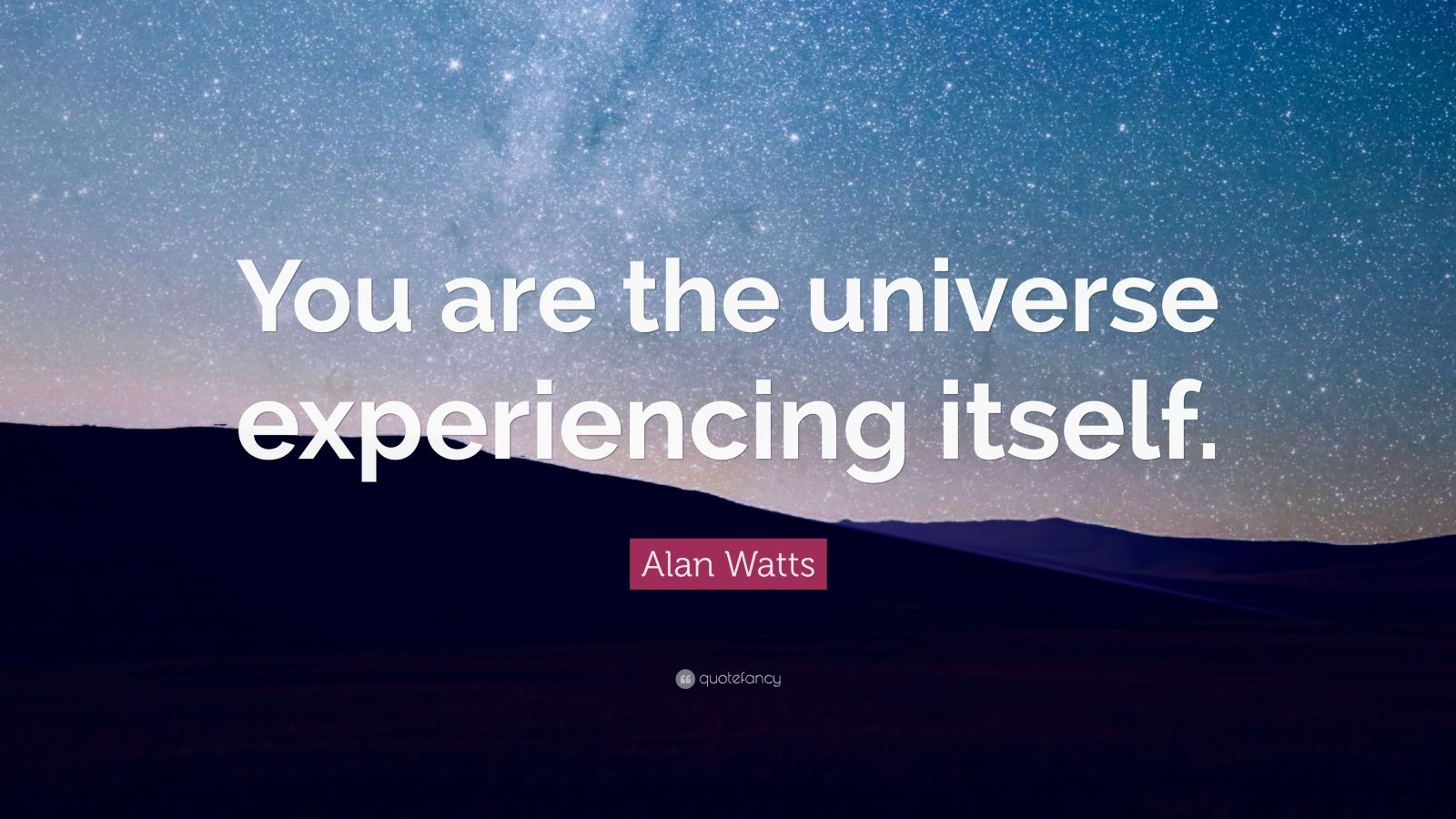 Relationship Quotes Wallpapers Alan Watts Quote You Are The Universe Experiencing