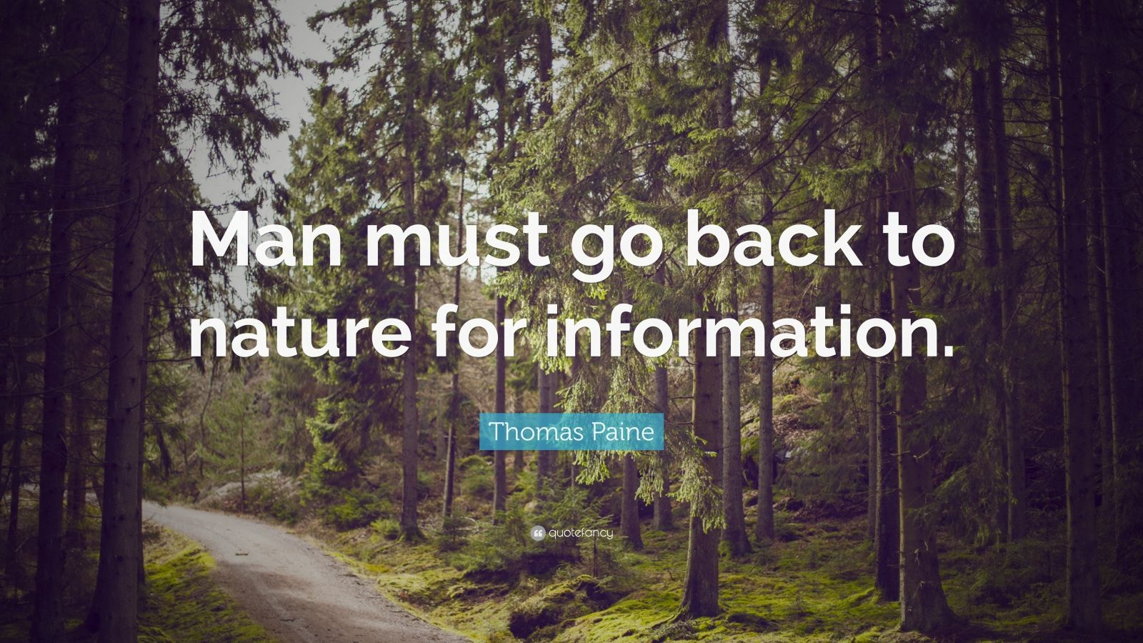 Desktop Wallpaper Motivational Quotes Thomas Paine Quote Man Must Go Back To Nature For
