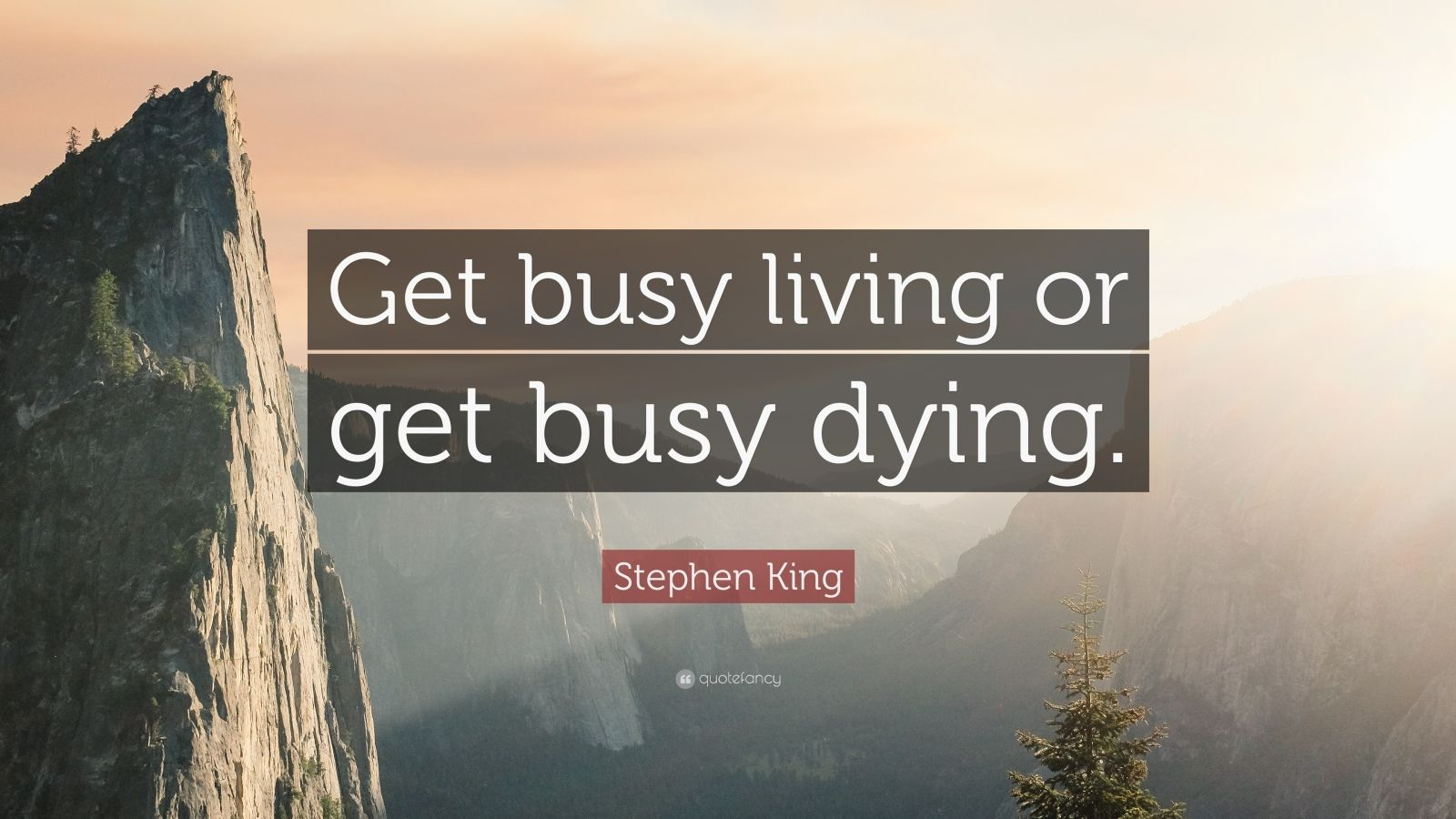 Love Inspiring Quotes Wallpaper Stephen King Quote Get Busy Living Or Get Busy Dying