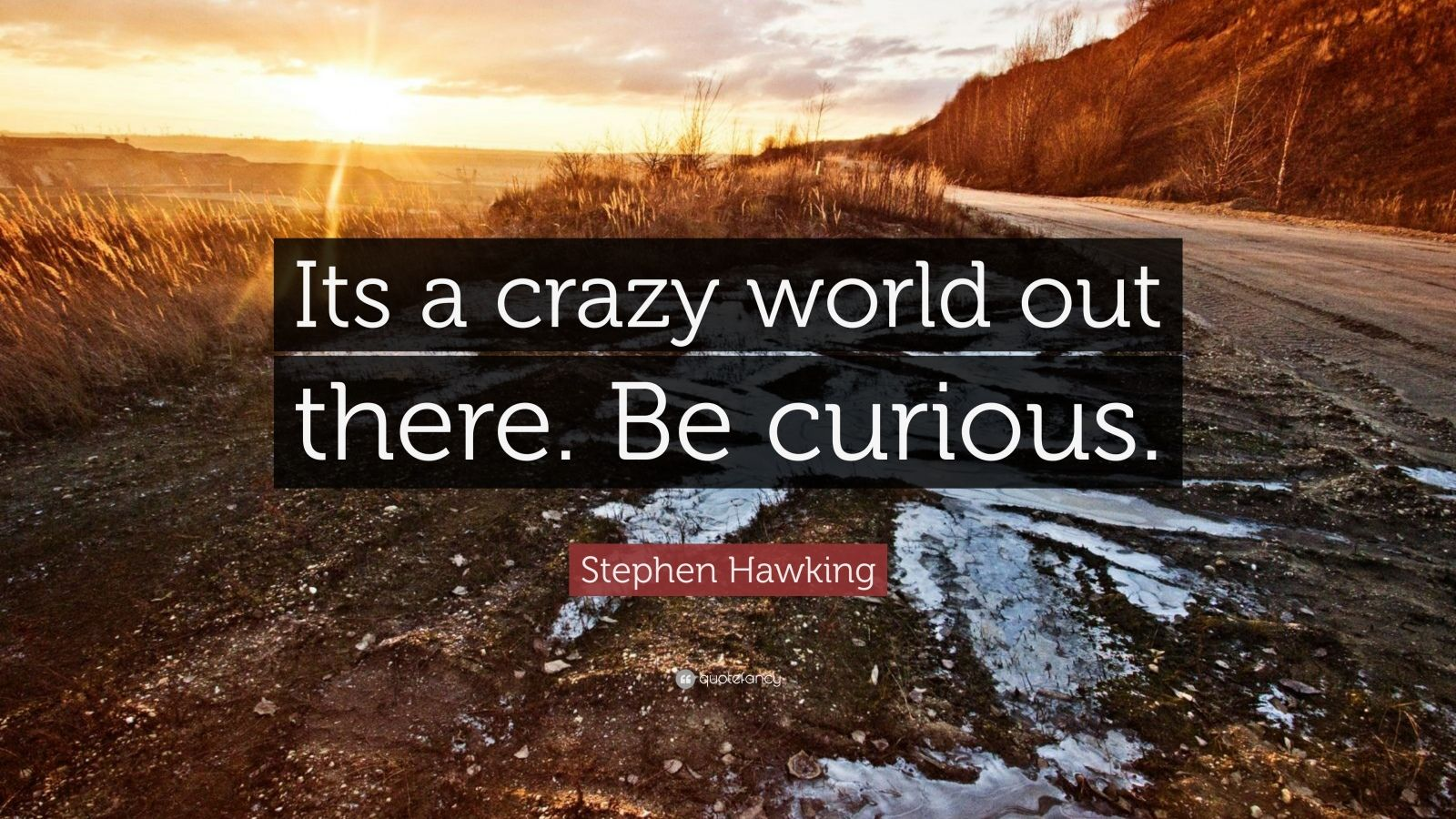 Nikola Tesla Wallpaper Quote Stephen Hawking Quote Its A Crazy World Out There Be