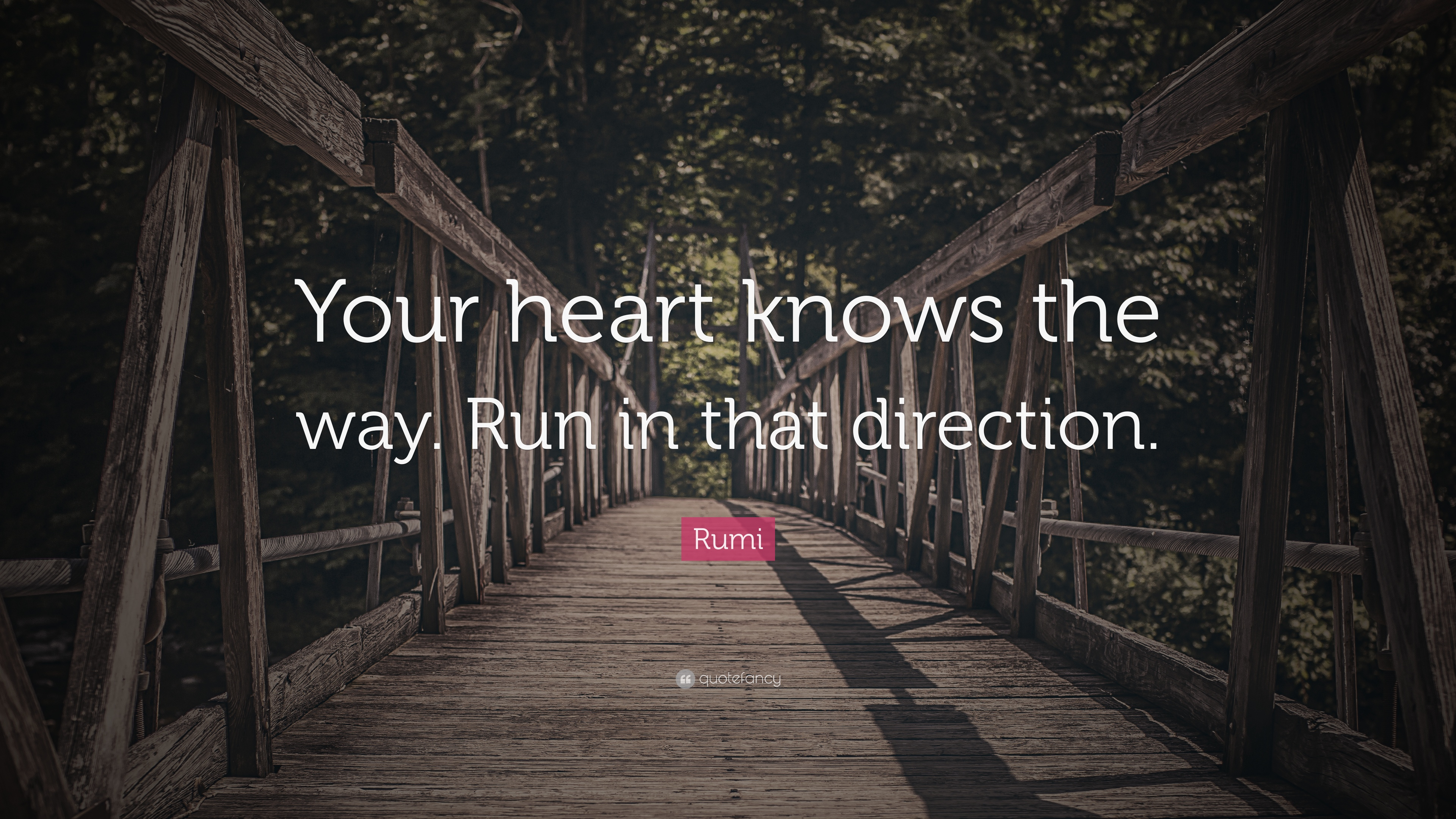 Zen Quote Wallpapers Rumi Quote Your Heart Knows The Way Run In That