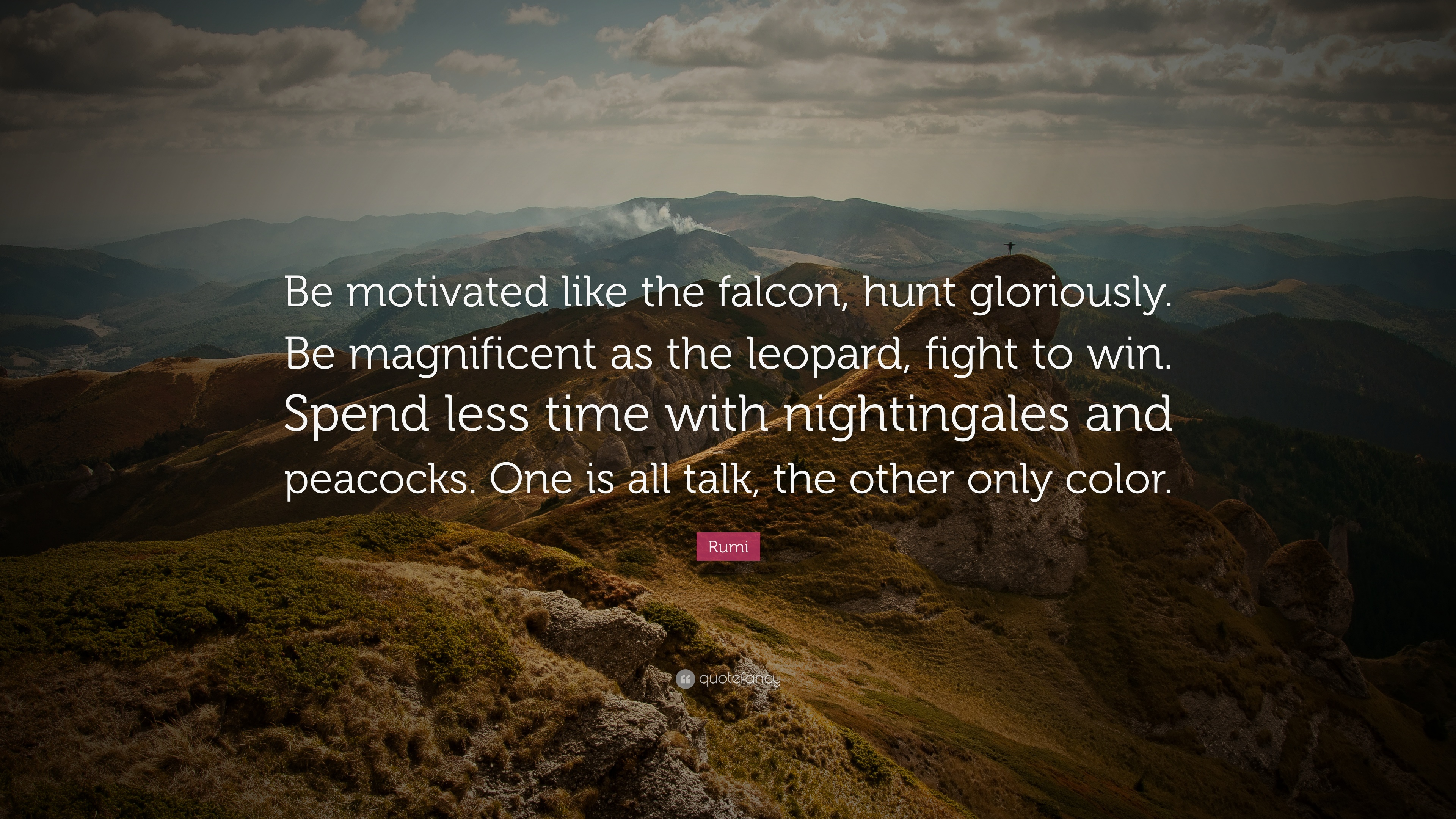 Conor Mcgregor Quote Wallpaper Rumi Quote Be Motivated Like The Falcon Hunt Gloriously
