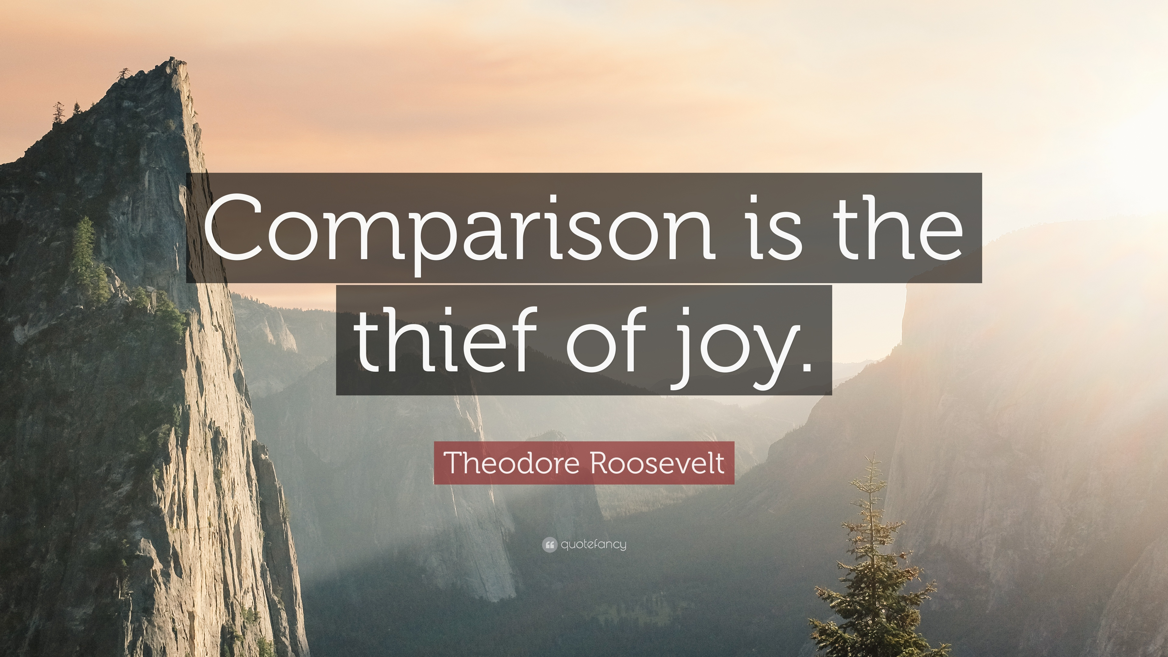 Theodore Roosevelt Wallpaper Quote Theodore Roosevelt Quote Comparison Is The Thief Of Joy
