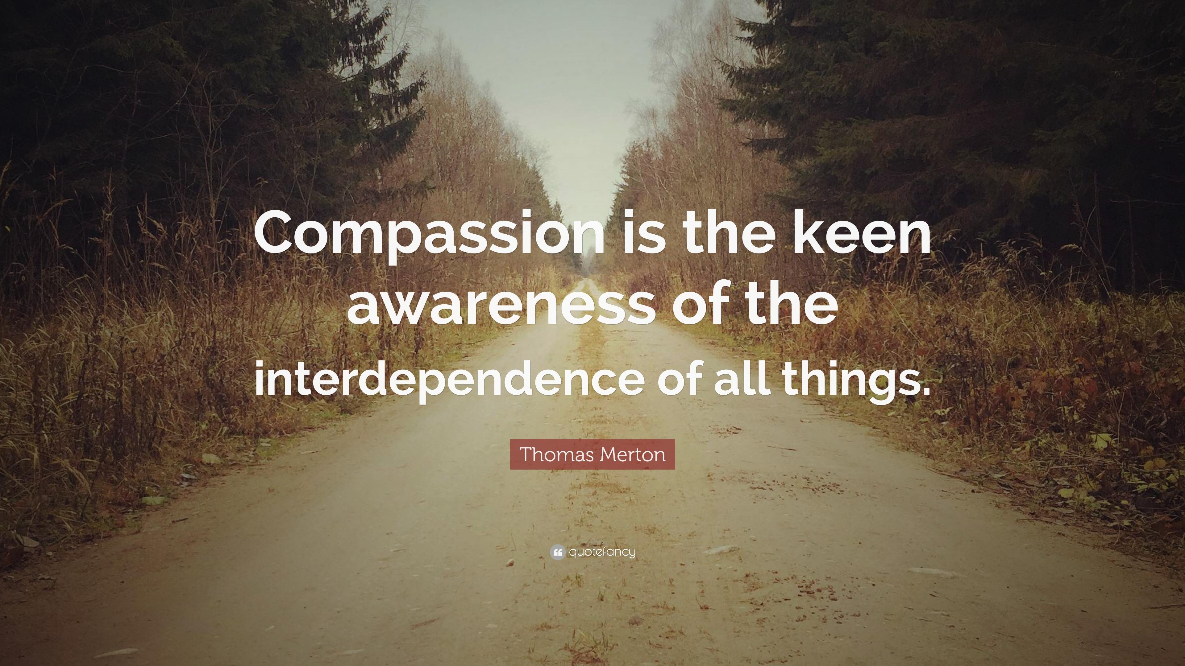 Zen Quote Wallpaper Thomas Merton Quote Compassion Is The Keen Awareness Of