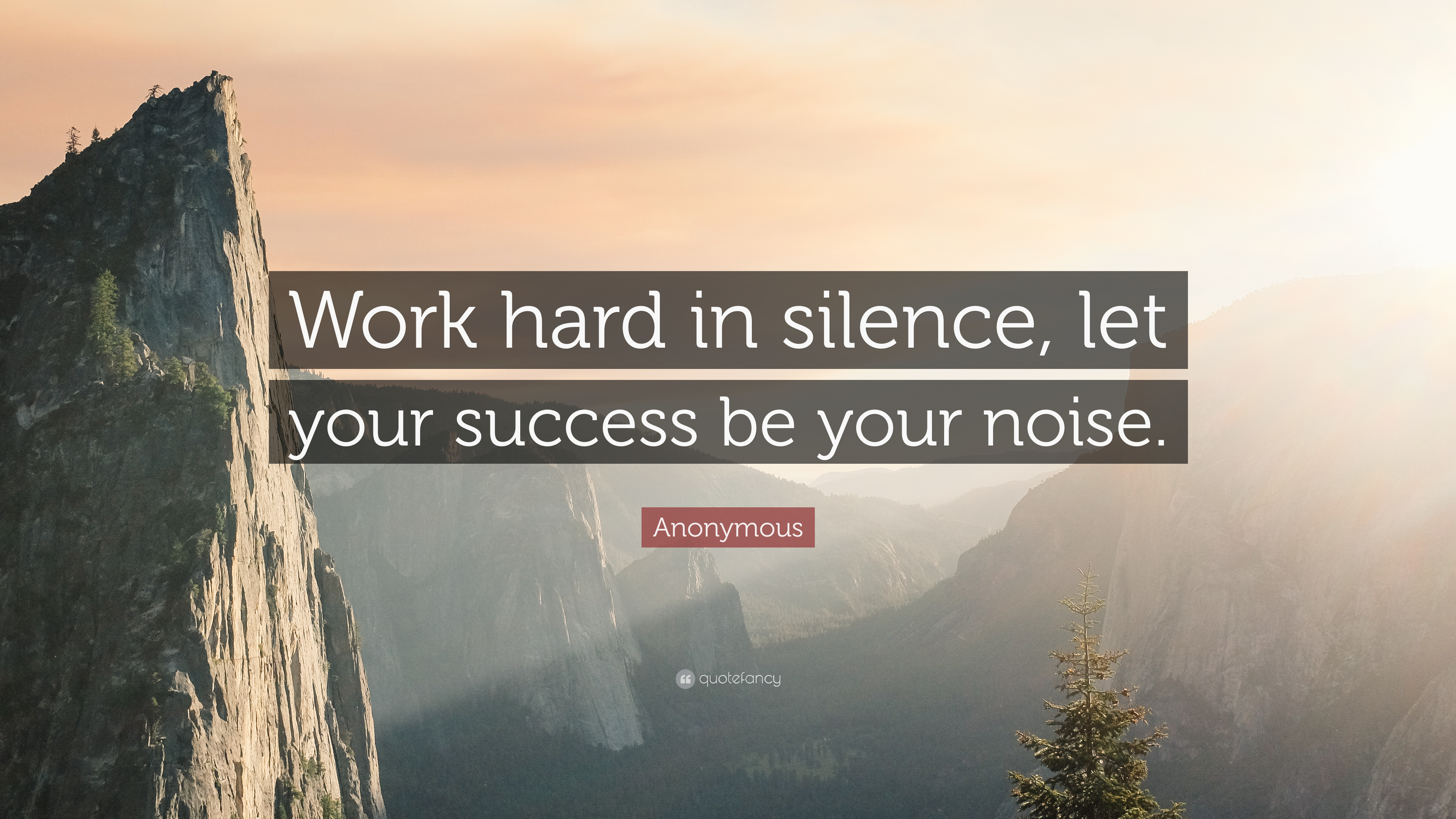 Eleanor Roosevelt Quote Wallpaper Consent Frank Ocean Quote Work Hard In Silence Let Your Success