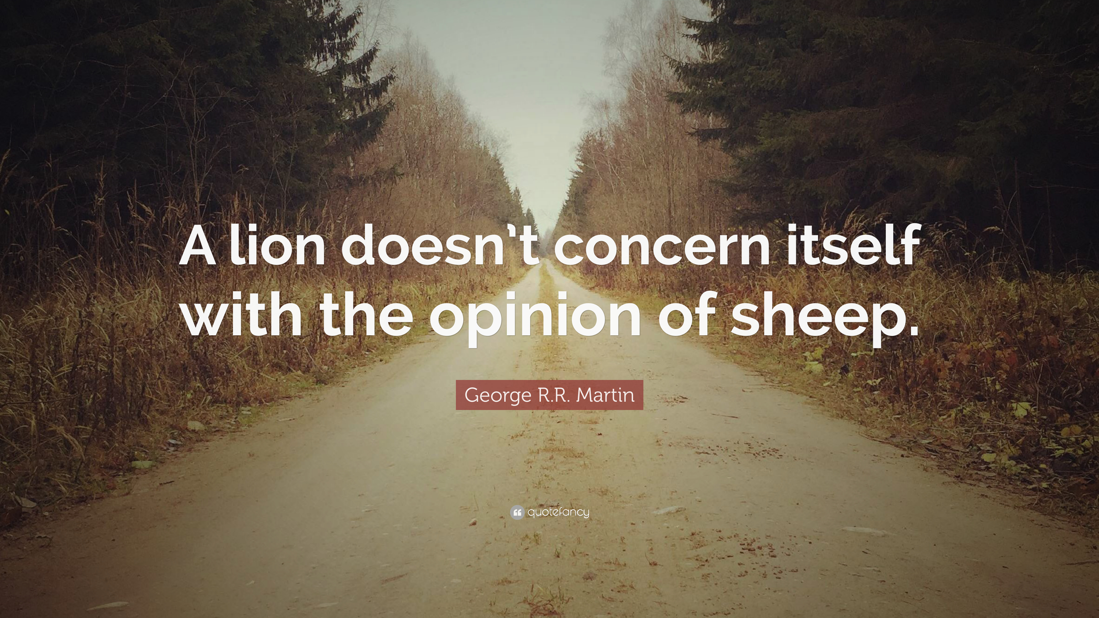 Roald Dahl Quotes Wallpaper George R R Martin Quote A Lion Doesn T Concern Itself