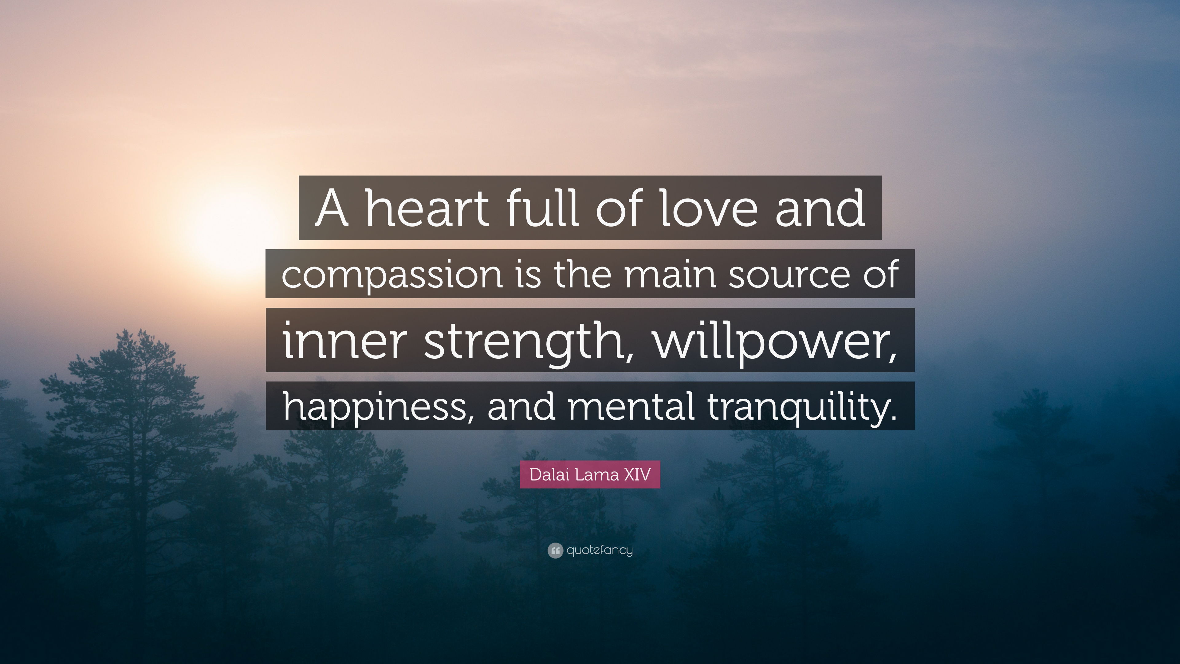 Dalai Lama Quotes Wallpapers Dalai Lama Xiv Quote A Heart Full Of Love And Compassion