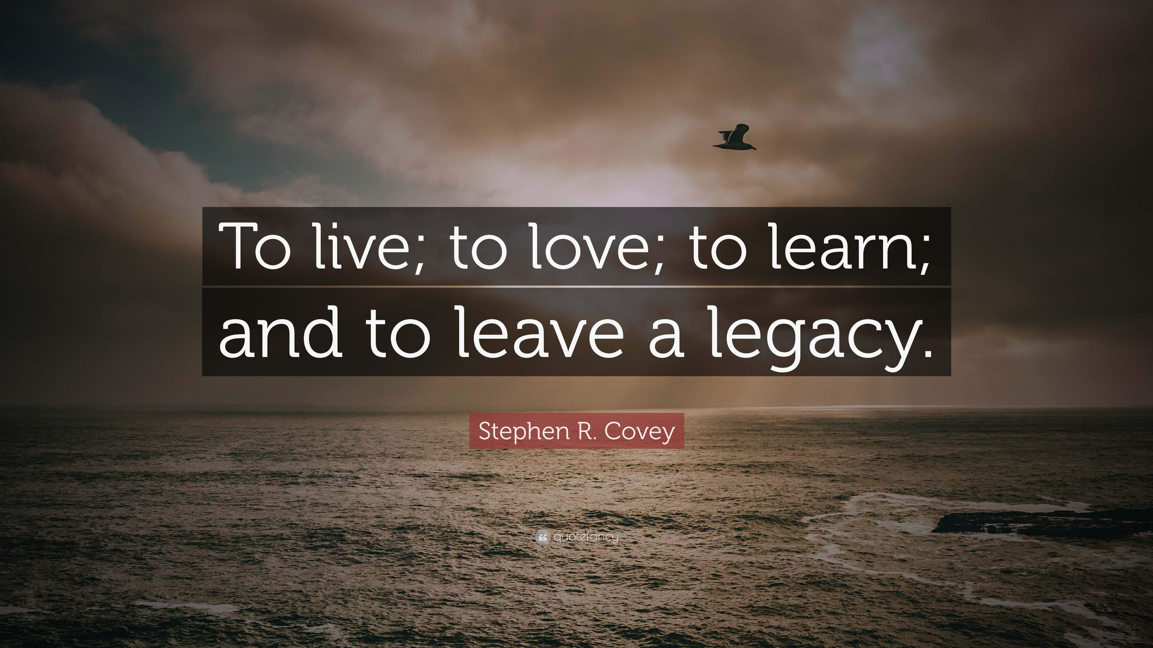 Malcolm X Wallpaper Quotes Stephen R Covey Quote To Live To Love To Learn And