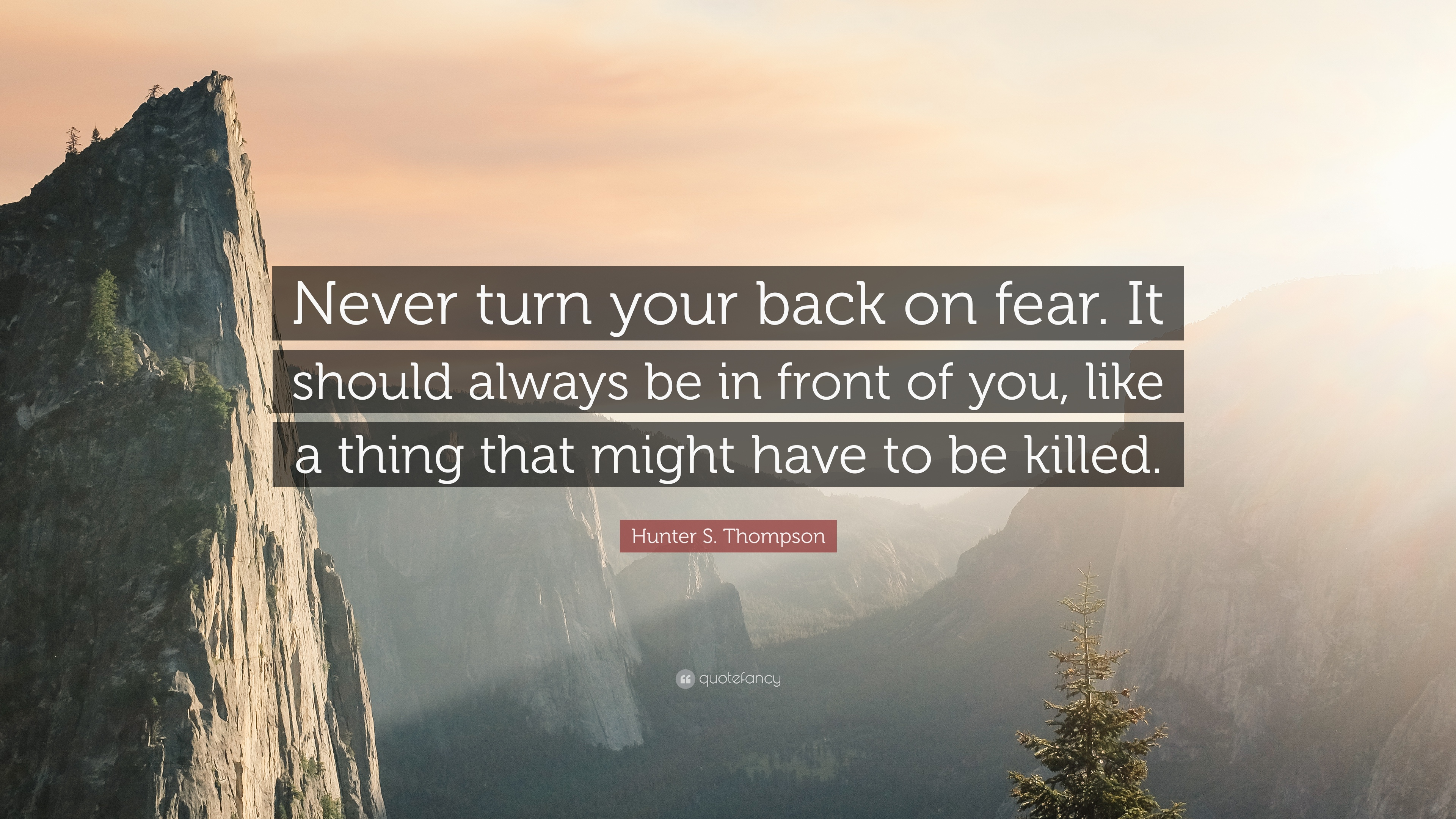Thought Provoking Quotes Wallpapers Hunter S Thompson Quote Never Turn Your Back On Fear
