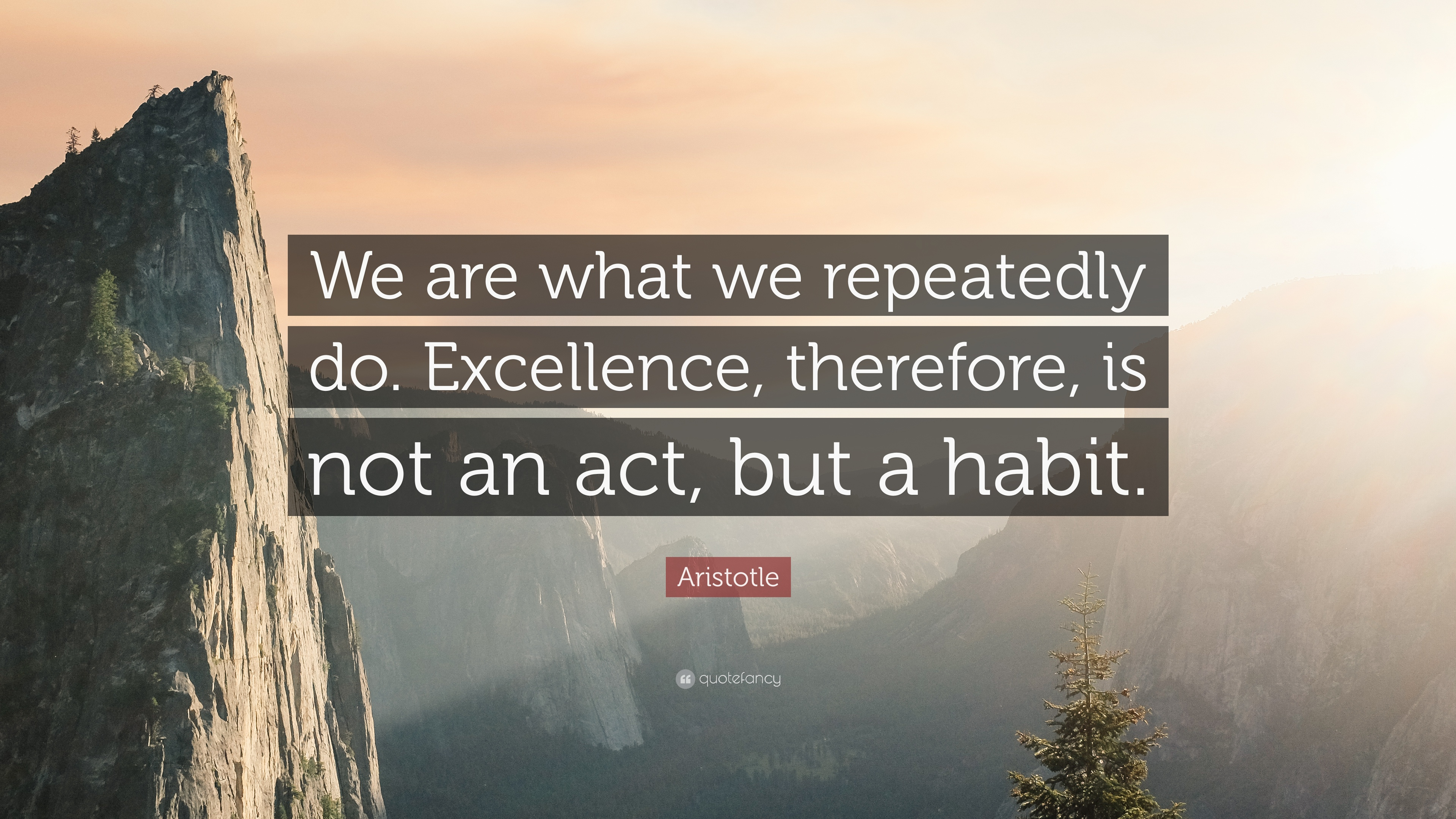 Persistence Quotes Wallpapers Aristotle Quote We Are What We Repeatedly Do Excellence