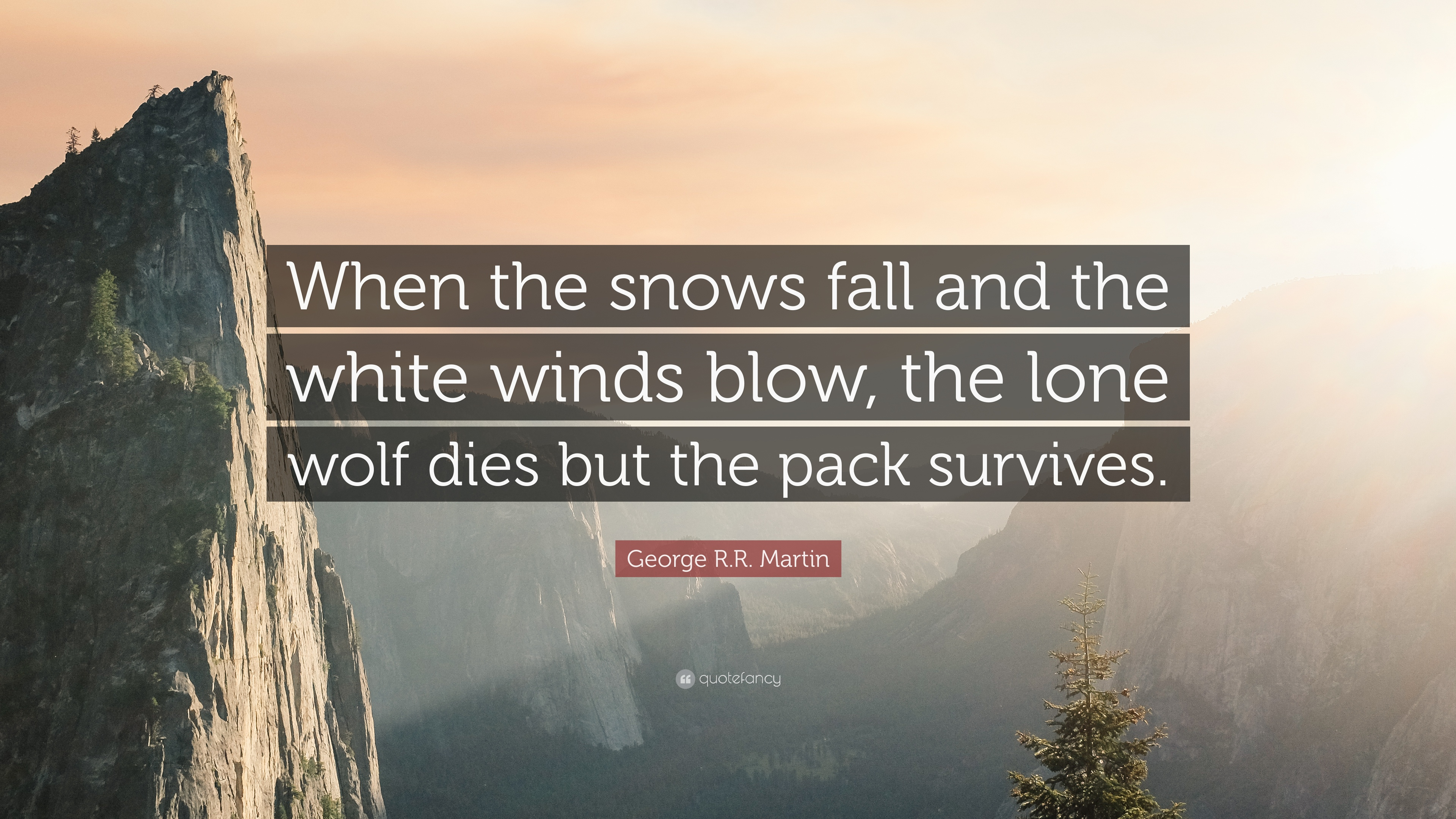 Roald Dahl Quotes Wallpaper George R R Martin Quote When The Snows Fall And The
