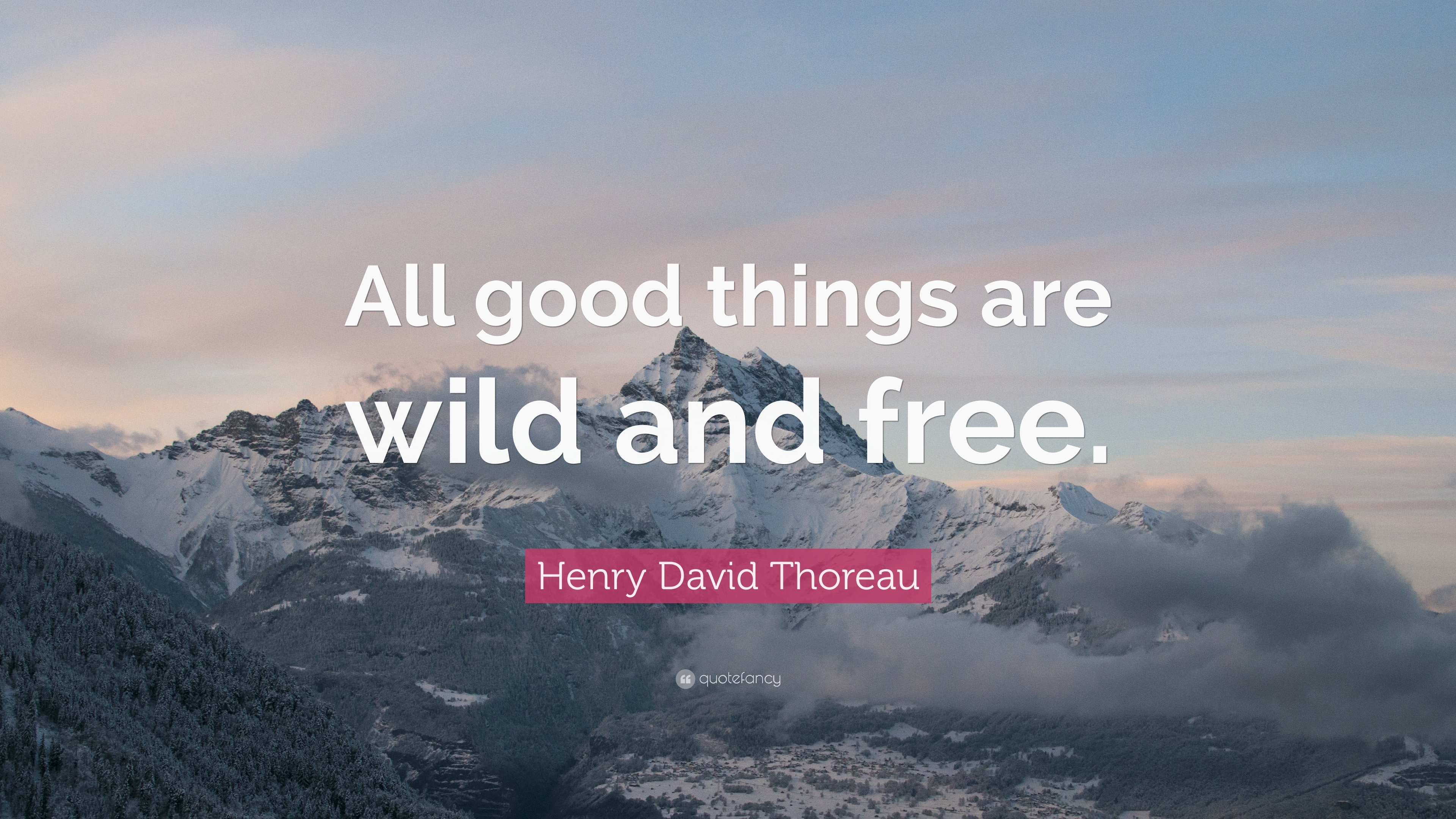 Motivational Quotes On Attitude Wallpapers Henry David Thoreau Quote All Good Things Are Wild And