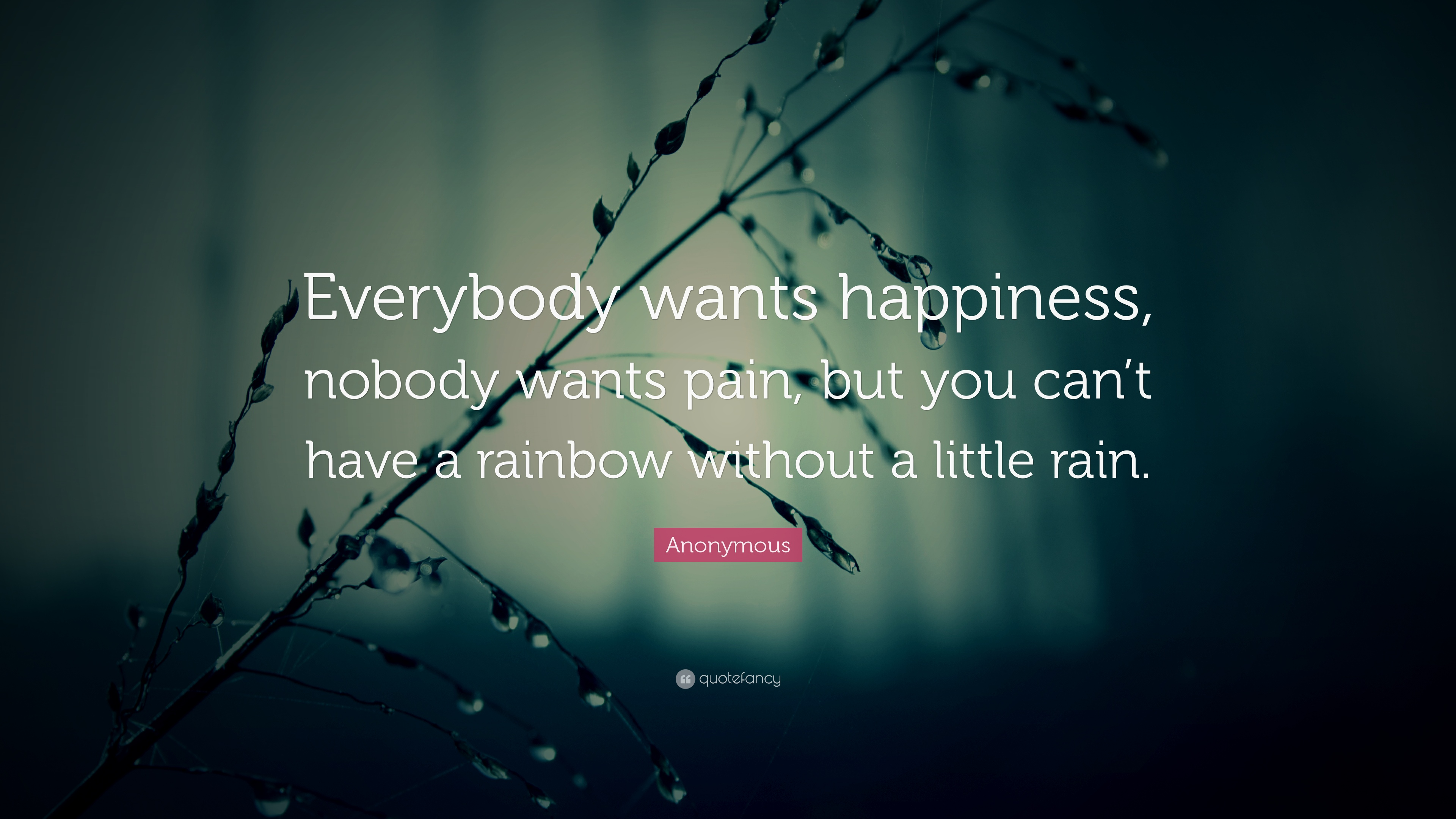 Business Quotes Hd Wallpapers Anonymous Quote Everybody Wants Happiness Nobody Wants