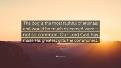 Small Of So God Made A Dog