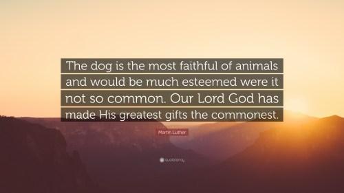 Medium Of So God Made A Dog