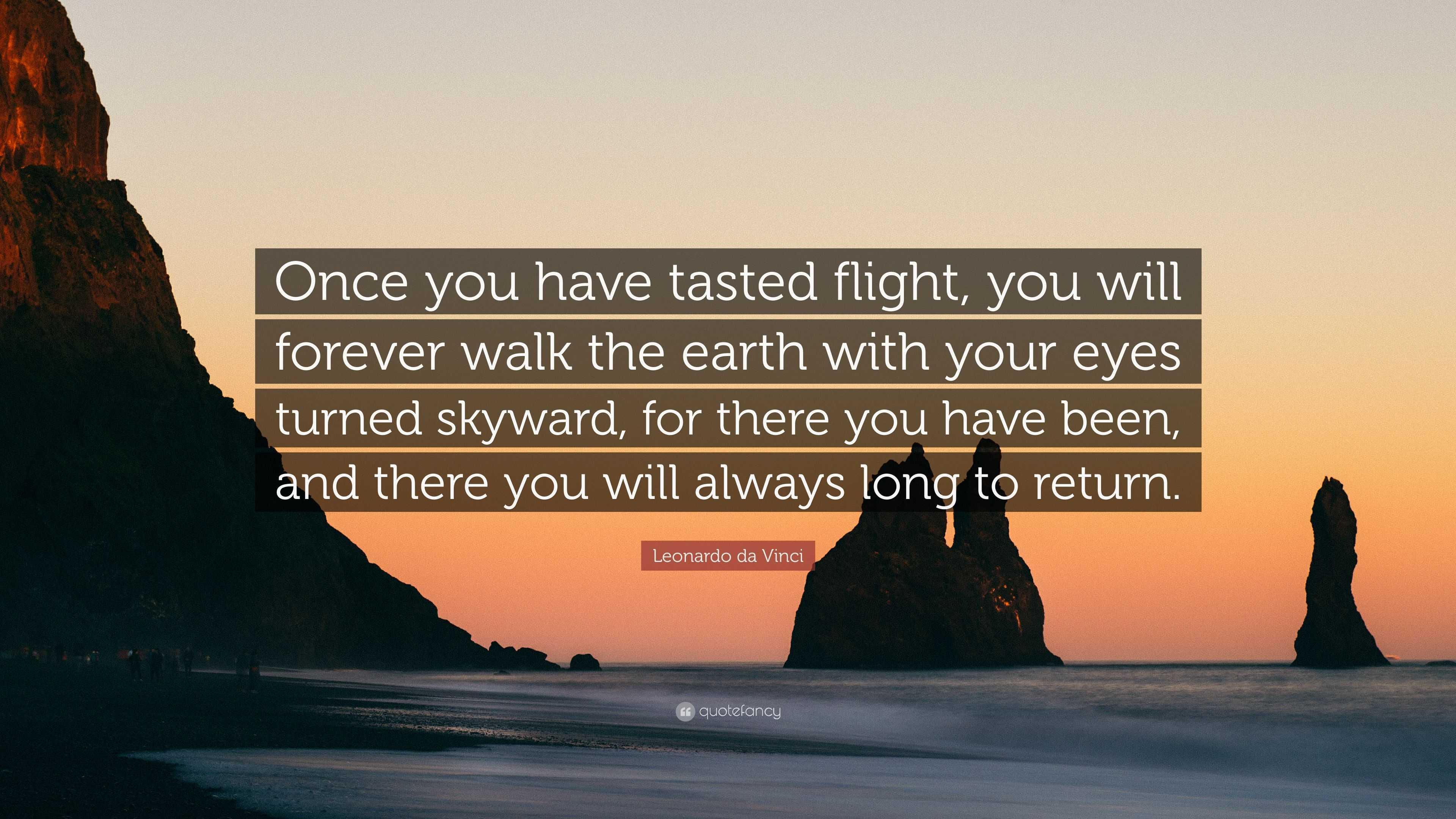 Vincent Van Gogh Quotes Wallpaper Leonardo Da Vinci Quote Once You Have Tasted Flight You
