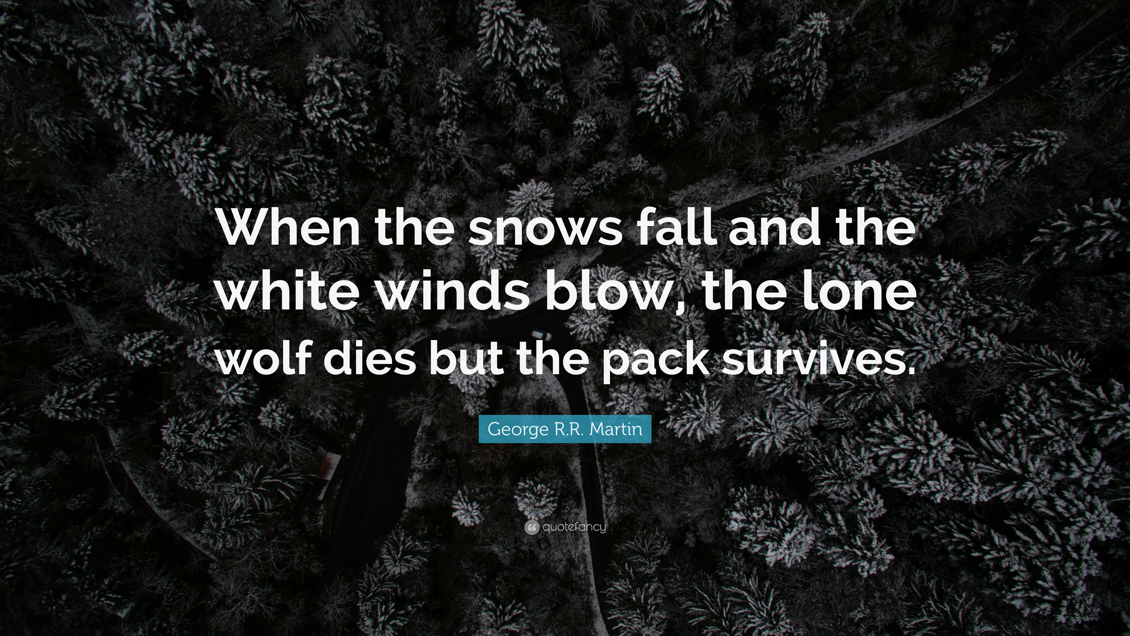 Malcolm X Wallpaper Quotes George R R Martin Quote When The Snows Fall And The