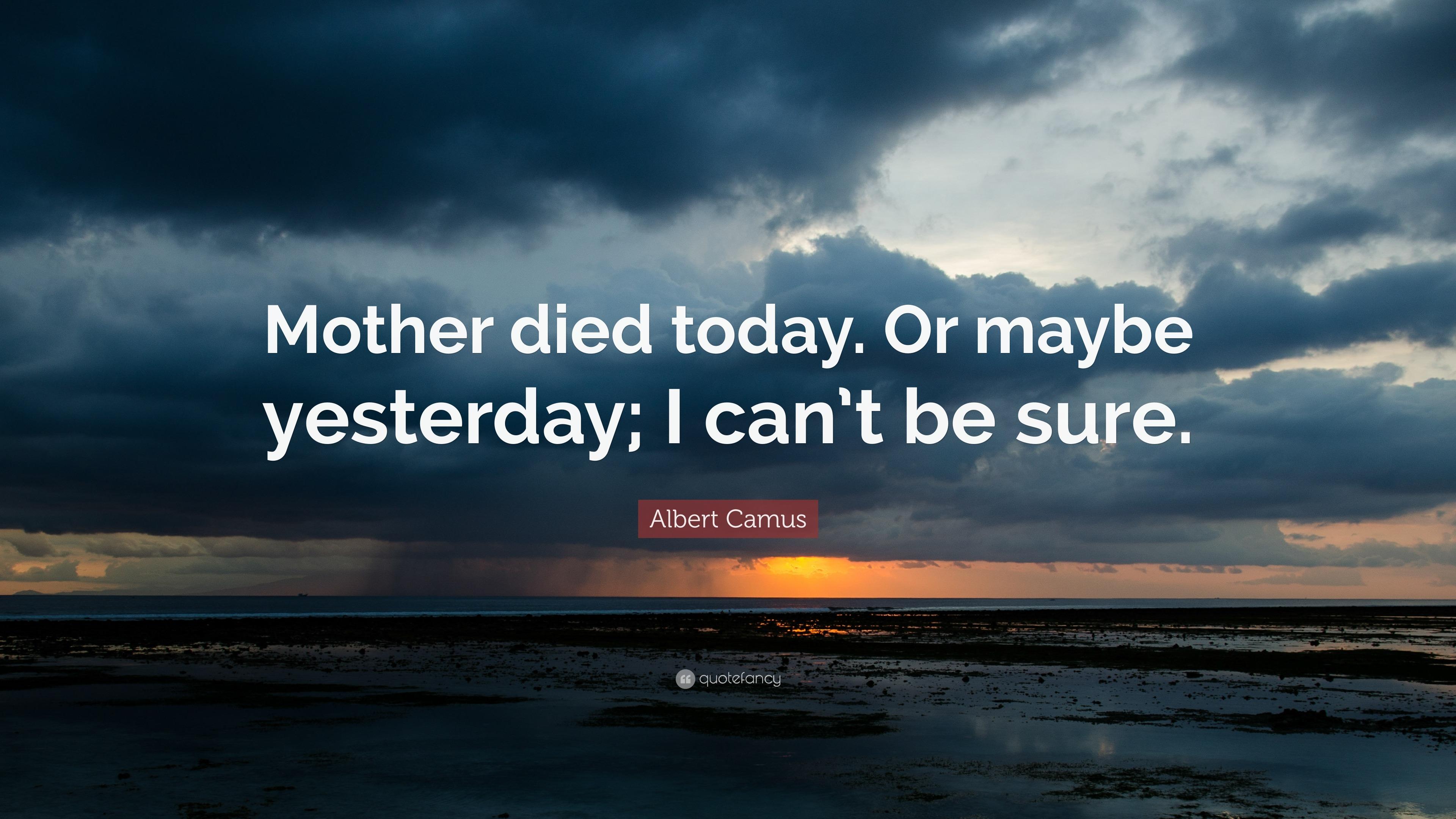 Frank Ocean Wallpaper Iphone X Albert Camus Quotes 100 Wallpapers Quotefancy