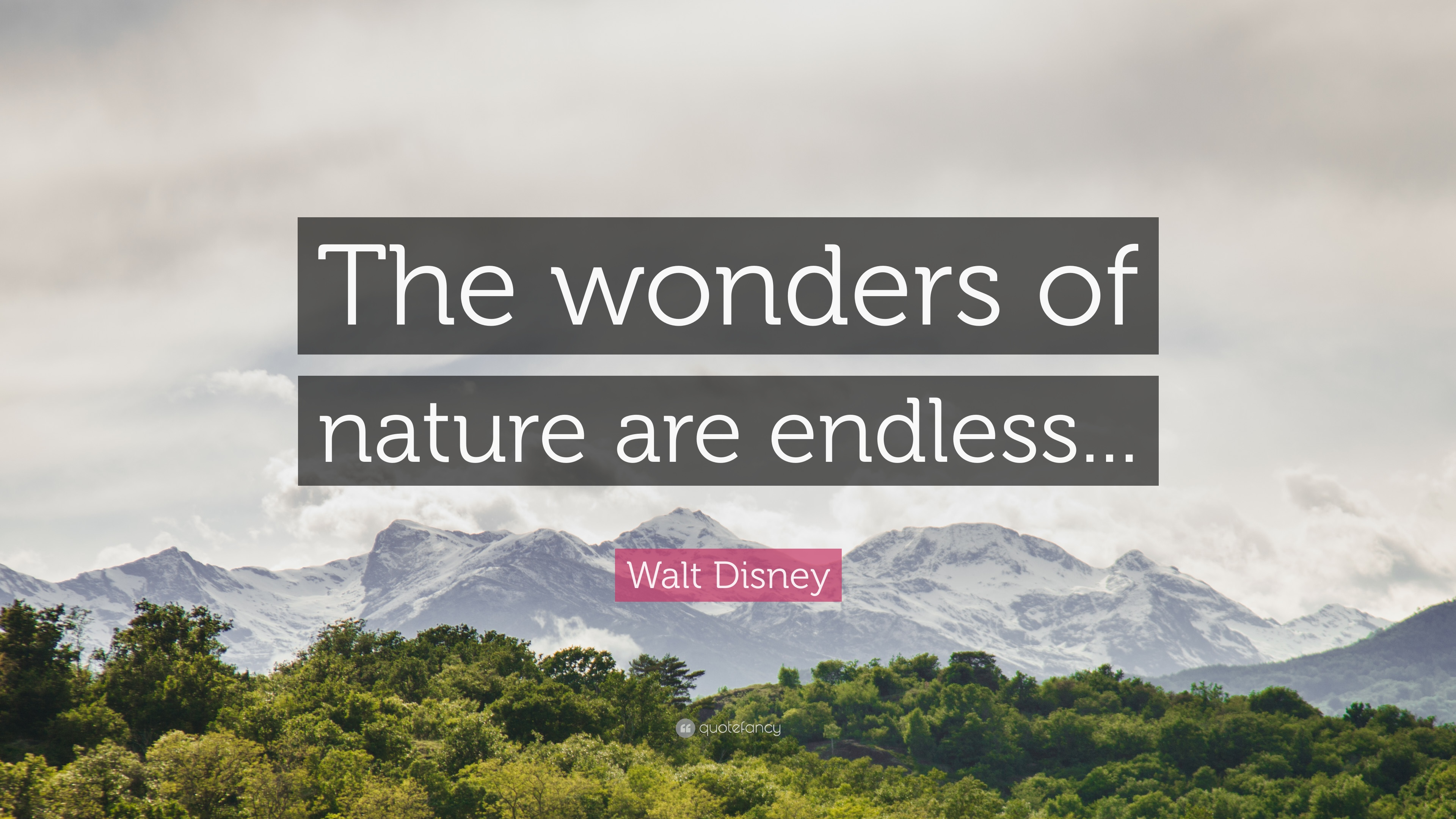 Friendship Quotes With Wallpapers Walt Disney Quote The Wonders Of Nature Are Endless