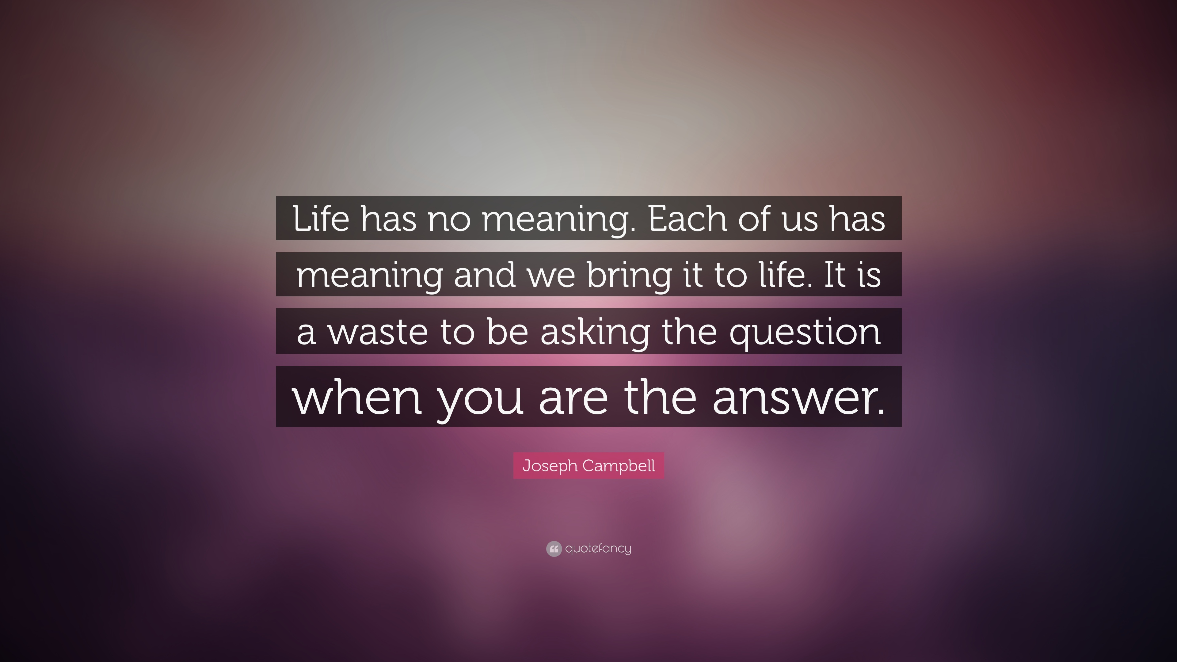 Socrates Wallpaper Quotes Joseph Campbell Quote Life Has No Meaning Each Of Us