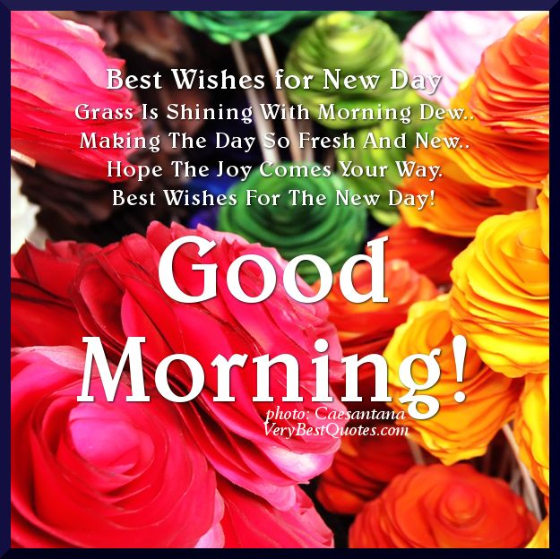 Good Morning Quotes  Good Morning quotes, Best Wishes for The New