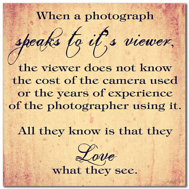 Photography Quotes Speaking to the Viewer Love this quote because - photography quote