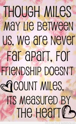 Innovative Girl Friend Quotes Friend Quotes Quotes Humor Friend Images Birthday Friend Images Boy