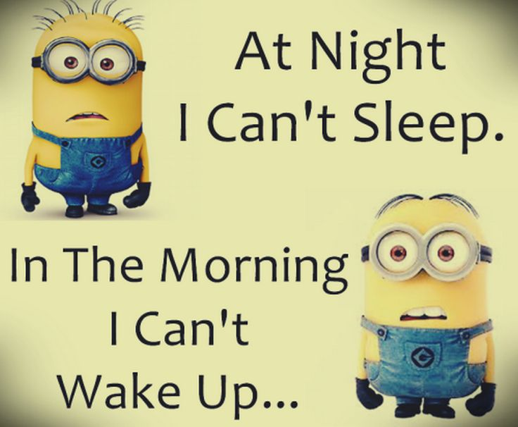 Sarcastic Wallpaper Quotes Top 40 Minion Jokes Quotes And Humor
