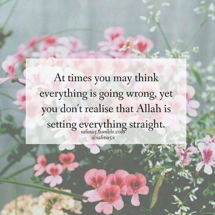 Muslim Girl Namaz Wallpaper 300 Beautiful Islamic Quotes About Life With Images 2018