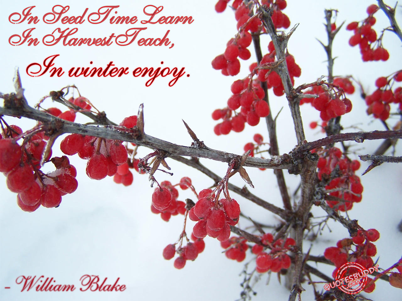 Christian Wallpaper Fall Happy Birthday Winter Quotes Pictures And Winter Quotes Images With