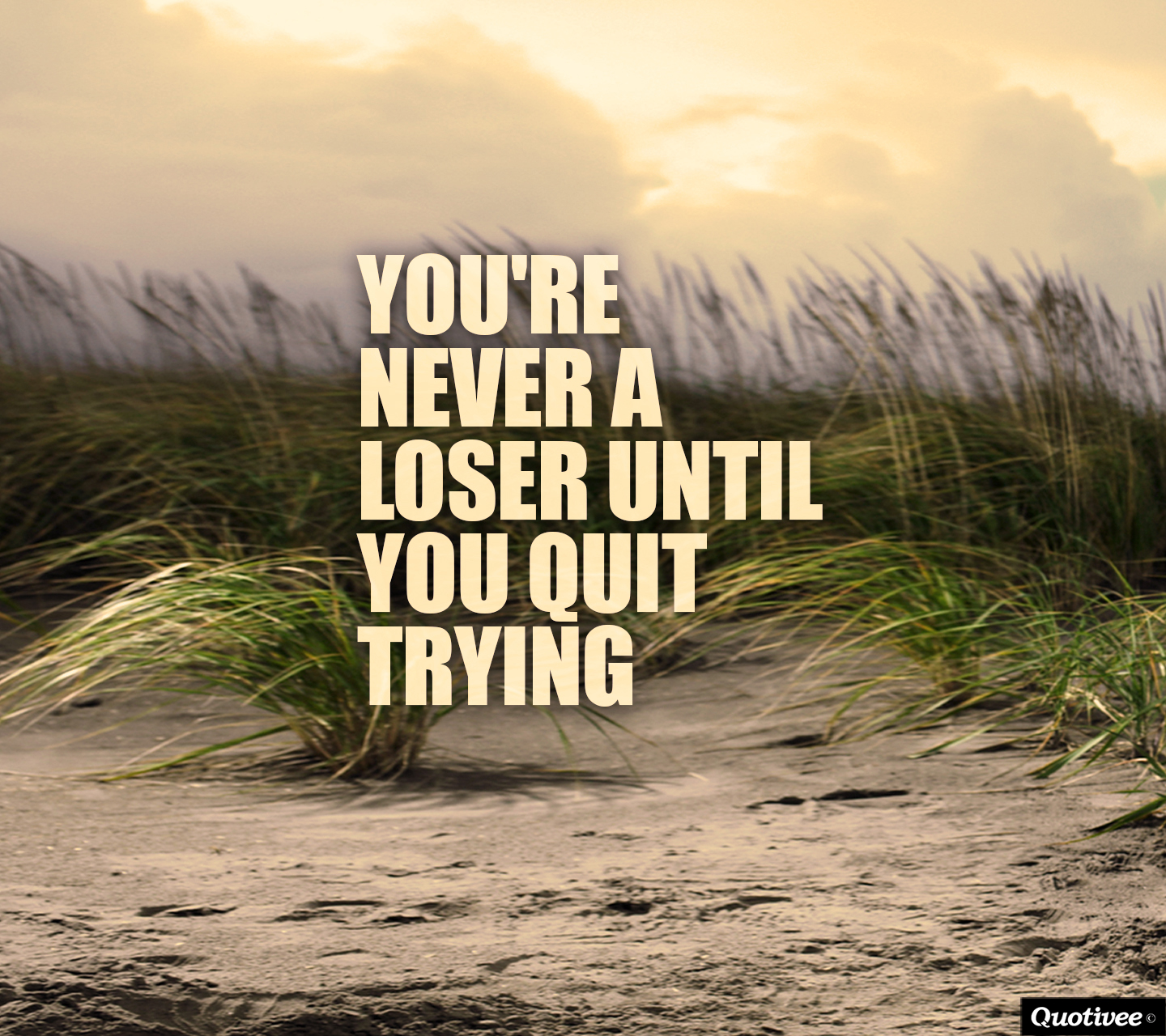 I Quit Quotes Wallpaper You Re Never A Loser Until You Quit Trying Inspirational