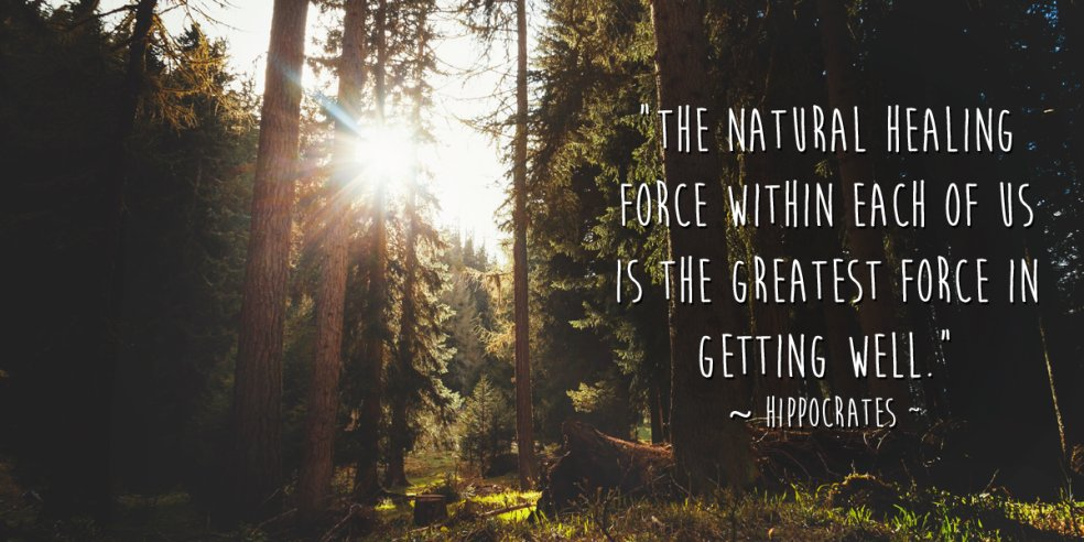 Short Quotes Wallpaper Hd The Natural Healing Force Within Ea Hippocrates Healing