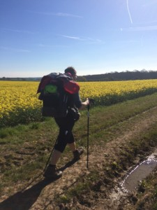 Striding along the glorious North Downs Way - before the pain kicked in