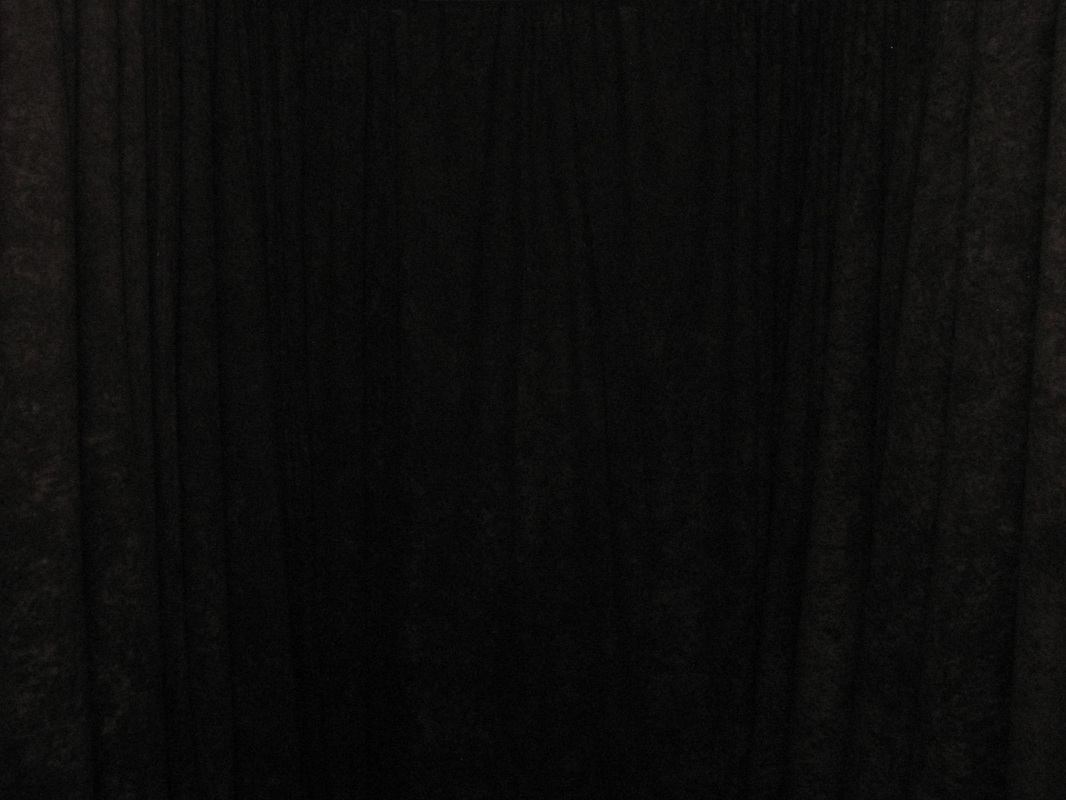 Schwarzer Vorhang Curtain Colors Qwik Picz Photo Booth Rental Michigan
