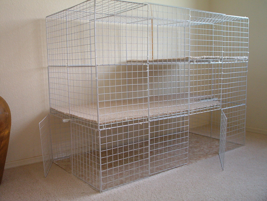 Diy Cage For Rabbit Indoor Cages Rabbits Indoors