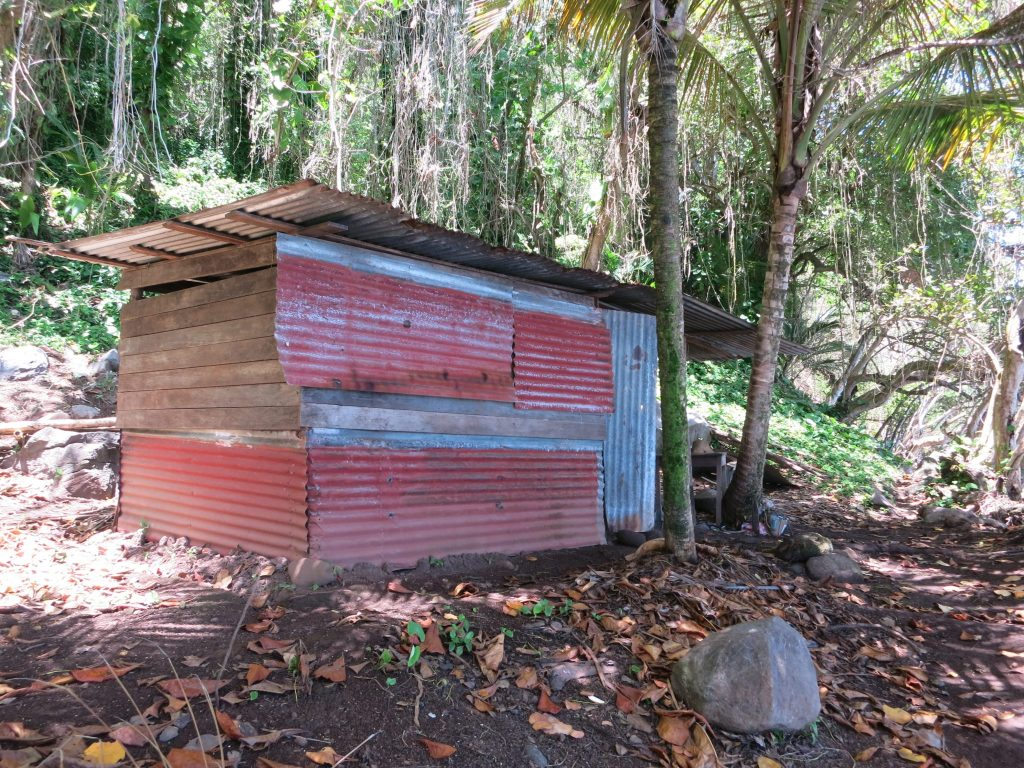 a hut made out of pieces of corrugated iron on Guadeloupe