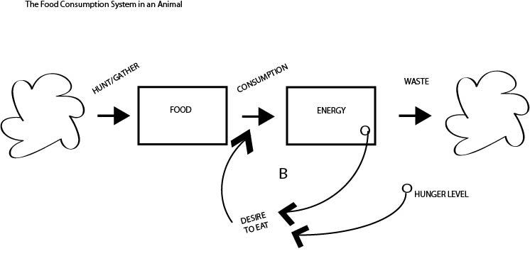 food loop diagram
