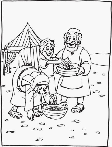 Coloring pages quail from heaven mannaandquail02 coloring pages quail on manna coloring page