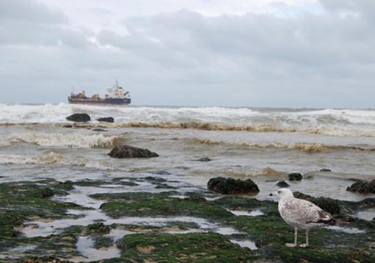 El índice contempla la distancia desde la costa hasta el lugar donde ocurre cada incidente marítimo, la magnitud del vertido liberado, la forma y longitud de la zona costera potencialmente afectada y el efecto de las corrientes oceánicas / photo_steff / pixabay